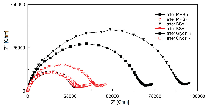 Cole-Cole plots (100 kHz and 1 Hz) of electrodes with EDC/NHS covalent coupling (+, filled points) and without EDC/NHS covalent coupling of BSA protein (-, hollow points).
