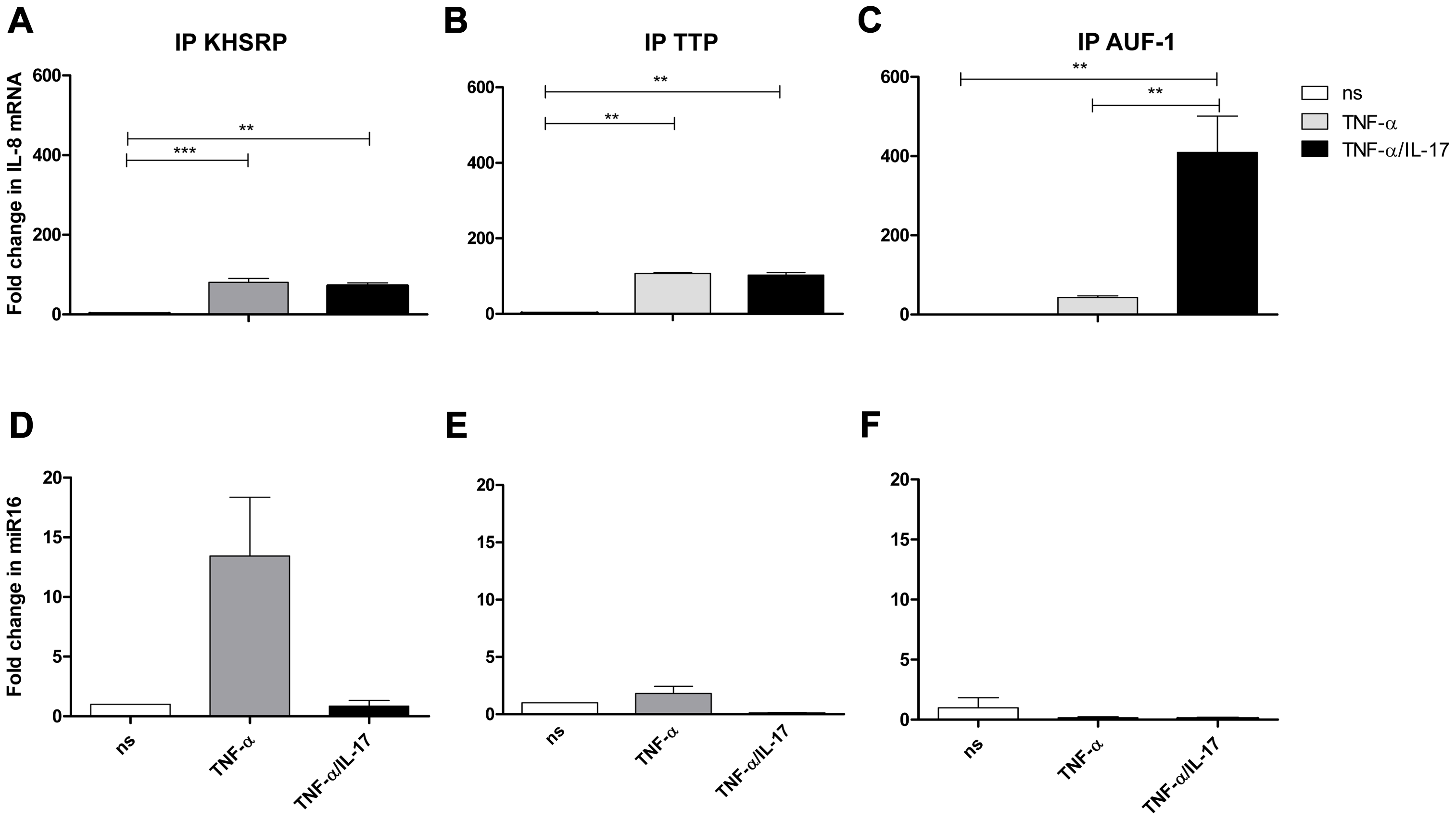 IL-8 mRNA and miR16 present in immuno-purified preparations of AUBps.