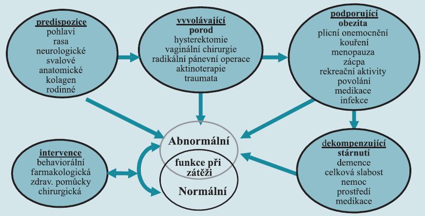 Rizikové faktory vzniku dysfunkce pánevního dna.