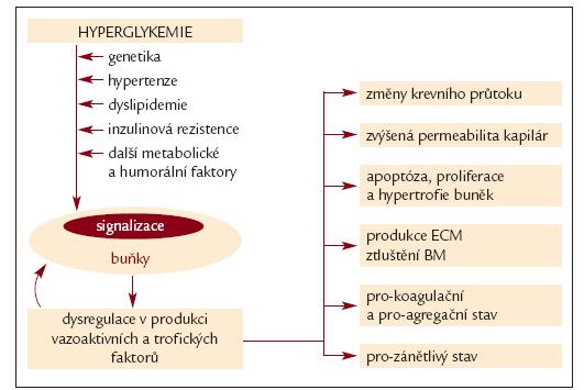 Schéma 1. Patogeneze diabetické retinopatie.
