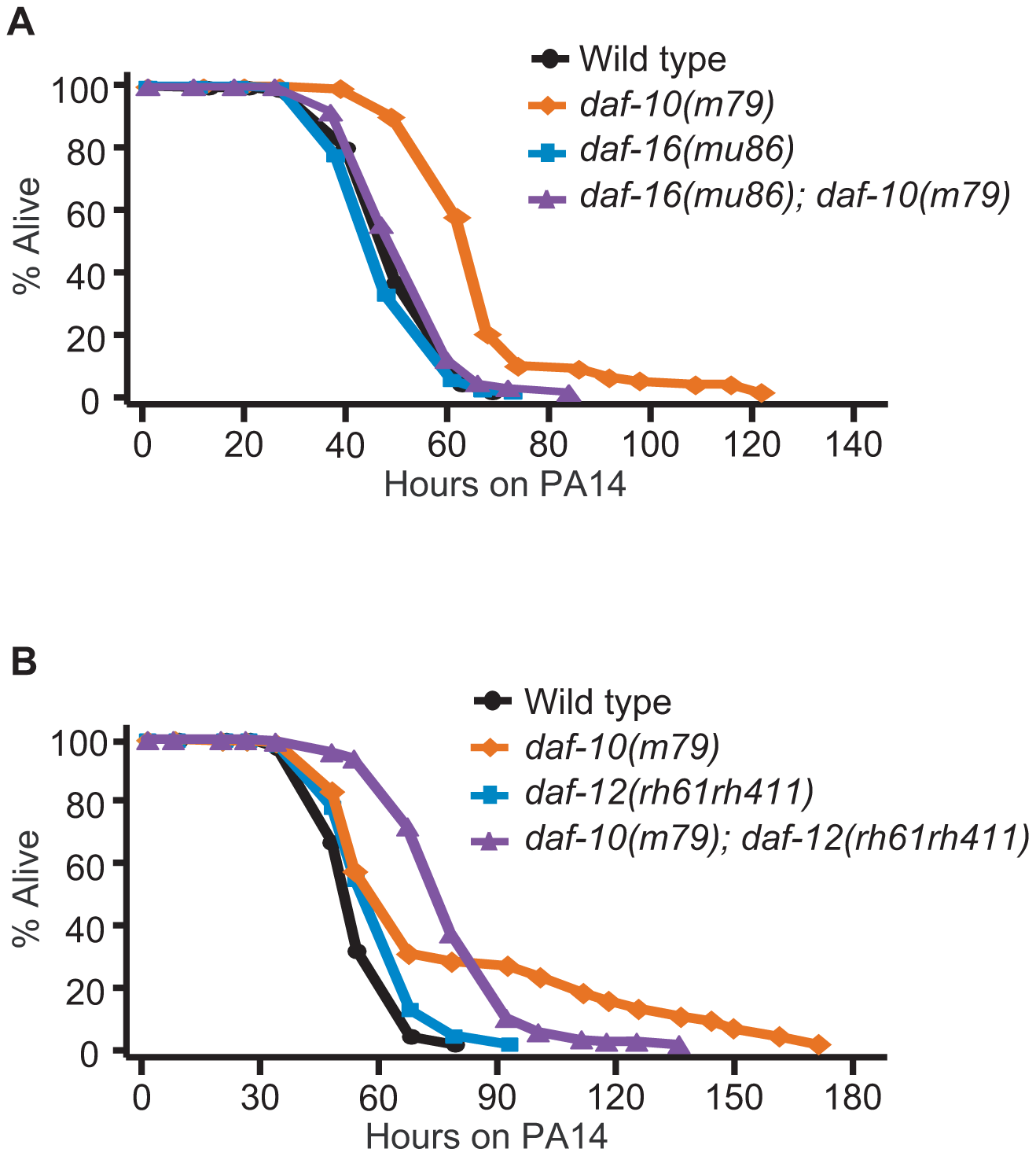The increased PA14 resistance of <i>daf-10</i> mutants requires DAF-16/FOXO.