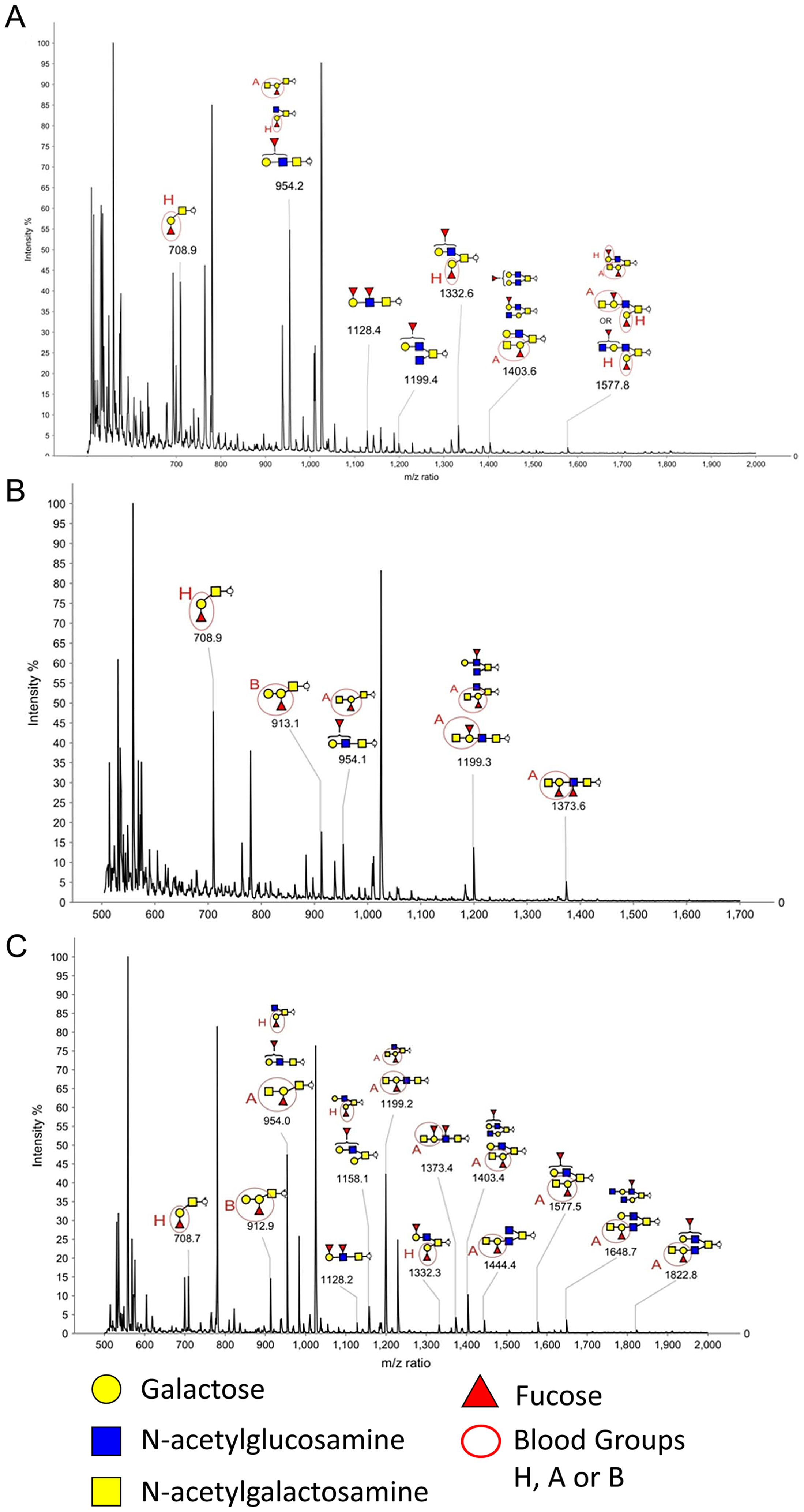MALDI-TOF MS of O-glycans released from Rabbit Duodenum.