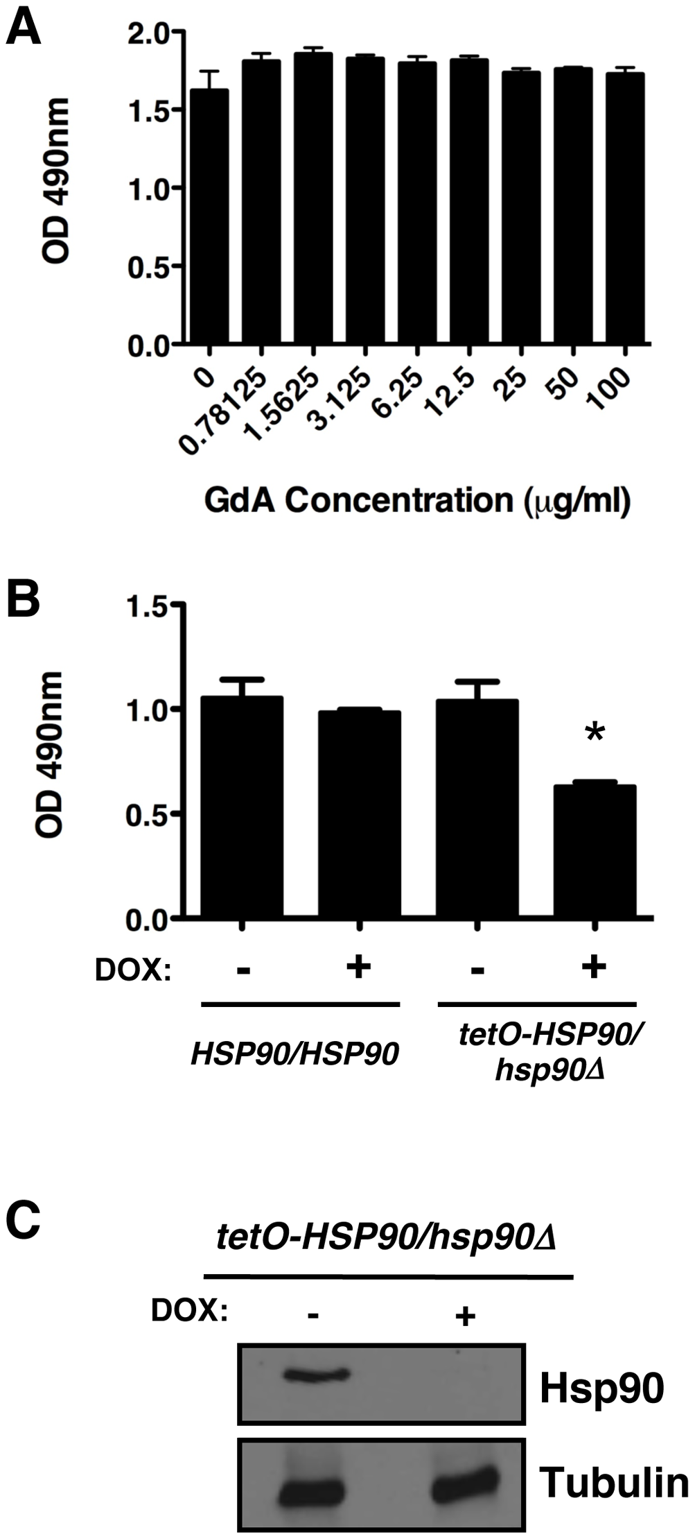Compromise of Hsp90 function does not block <i>C. albicans</i> biofilm development in vitro.