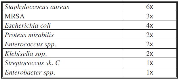 Bakteriální osídlení při příjmu na lůžko – polymikrobiální flóra Tab. 3. Bacterial colonization on admission to hospital – polymicrobial flora