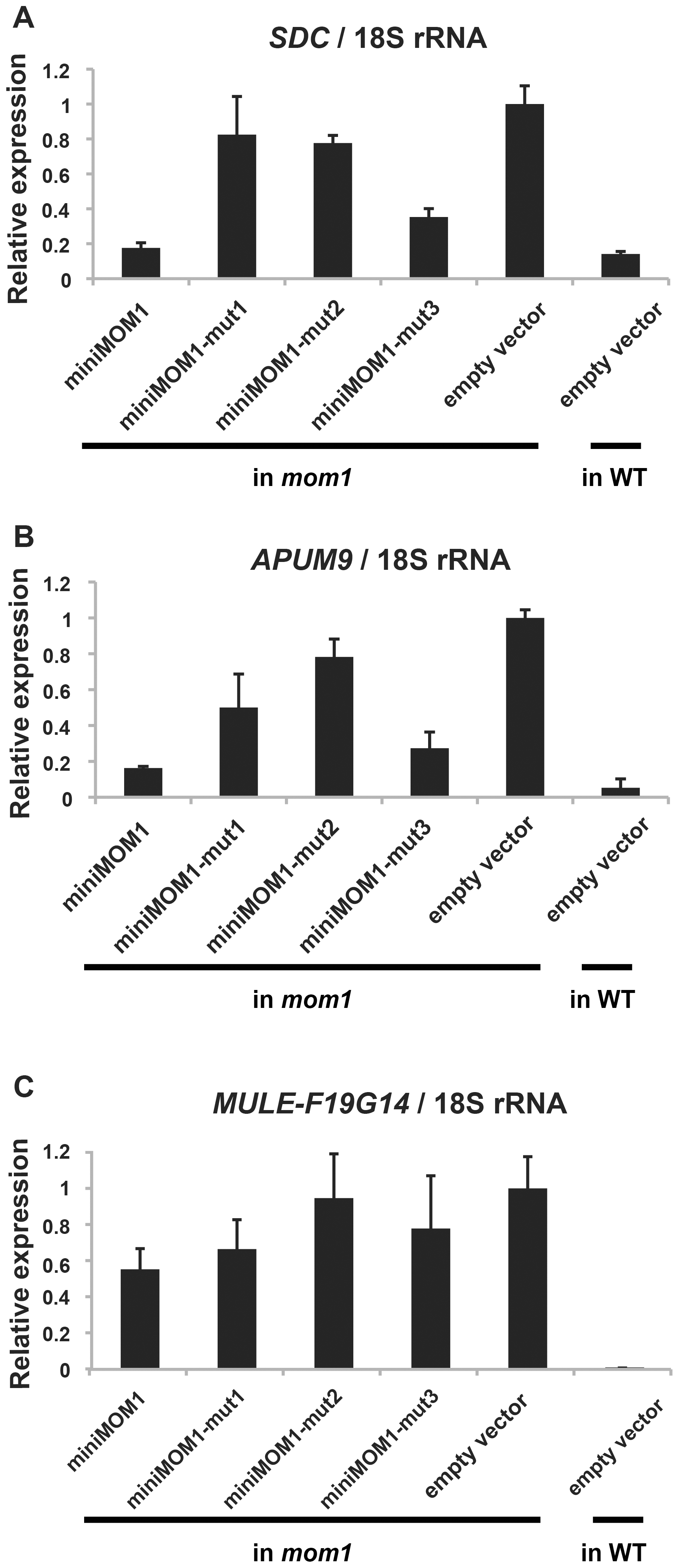 Multimerization of CMM2 domains is crucial for TGS activity at various chromosomal loci.