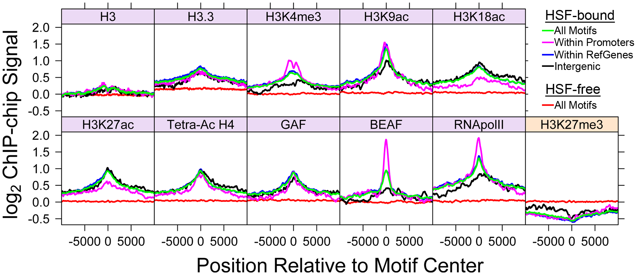Bound HSE motifs contain marks of active chromatin prior to HSF binding.