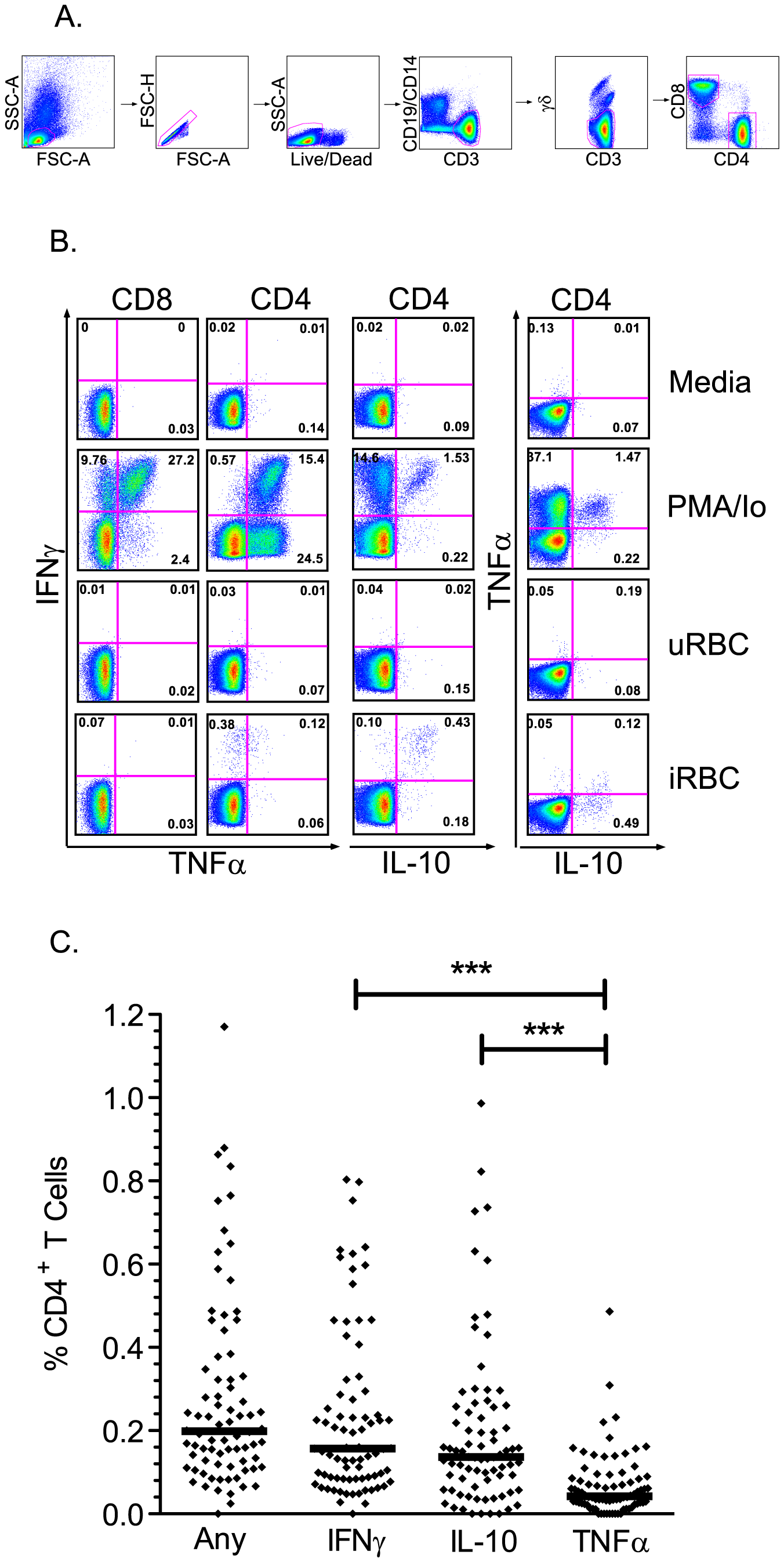 T cell responses to malaria-infected red blood cells using multiparameter flow cytometry.