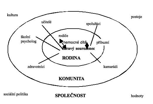 Zdravý sourozenec v síti sociálních vztahů (modifikovaně podle Newcomová, 2004, s. 17)
