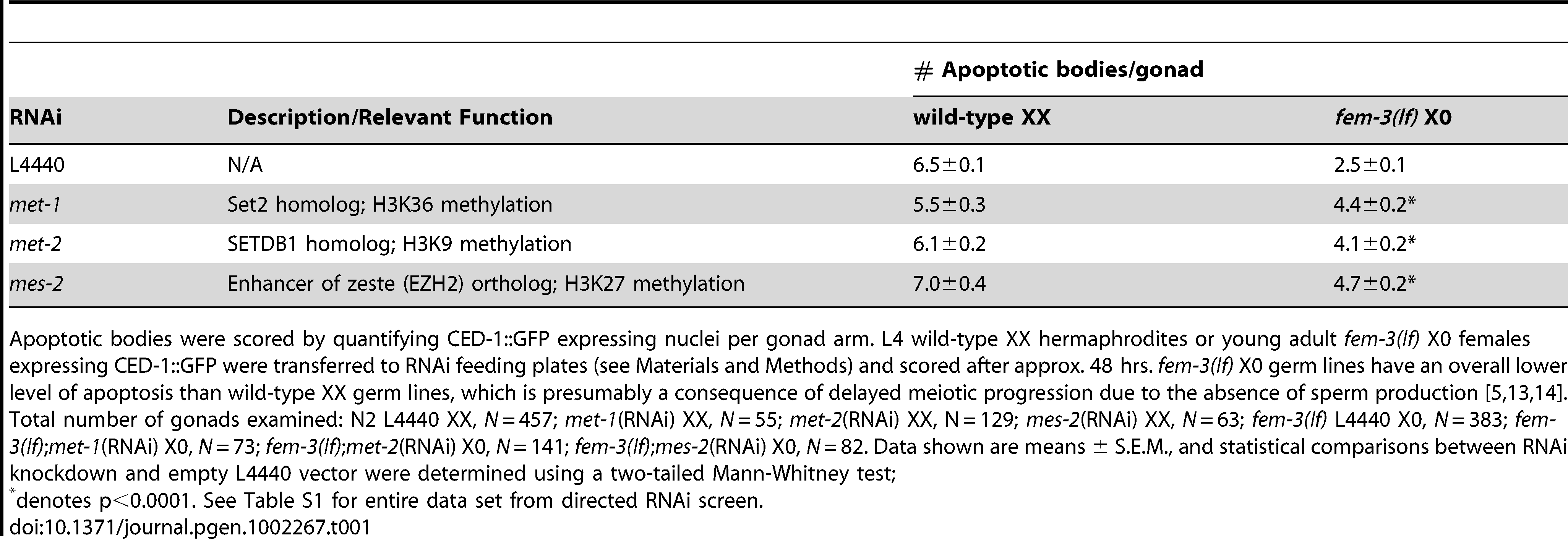 Absence of a subset of SET-domain HMTases results in elevated apoptosis in the heterogametic (X0) germ line.