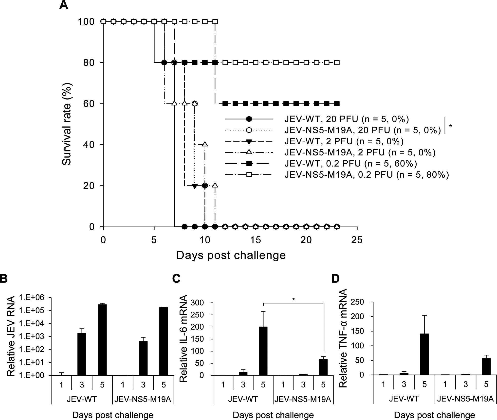 Reduced neurovirulence of NS5-M19A—mutated JEV in challenged mice.