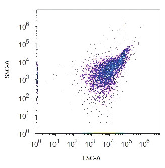 Dvouparametrový dot plot zobrazující bakteriální populaci na základě přímého (FSC) a bočního (SSC) rozptylu světla