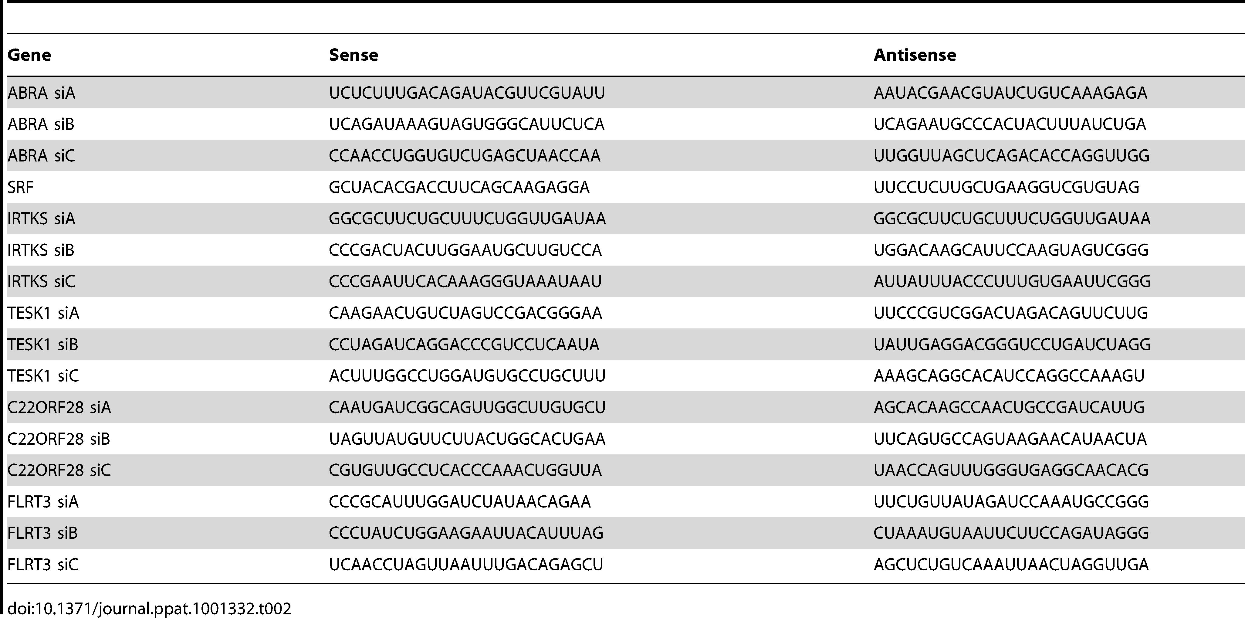 siRNA silencing sequences.