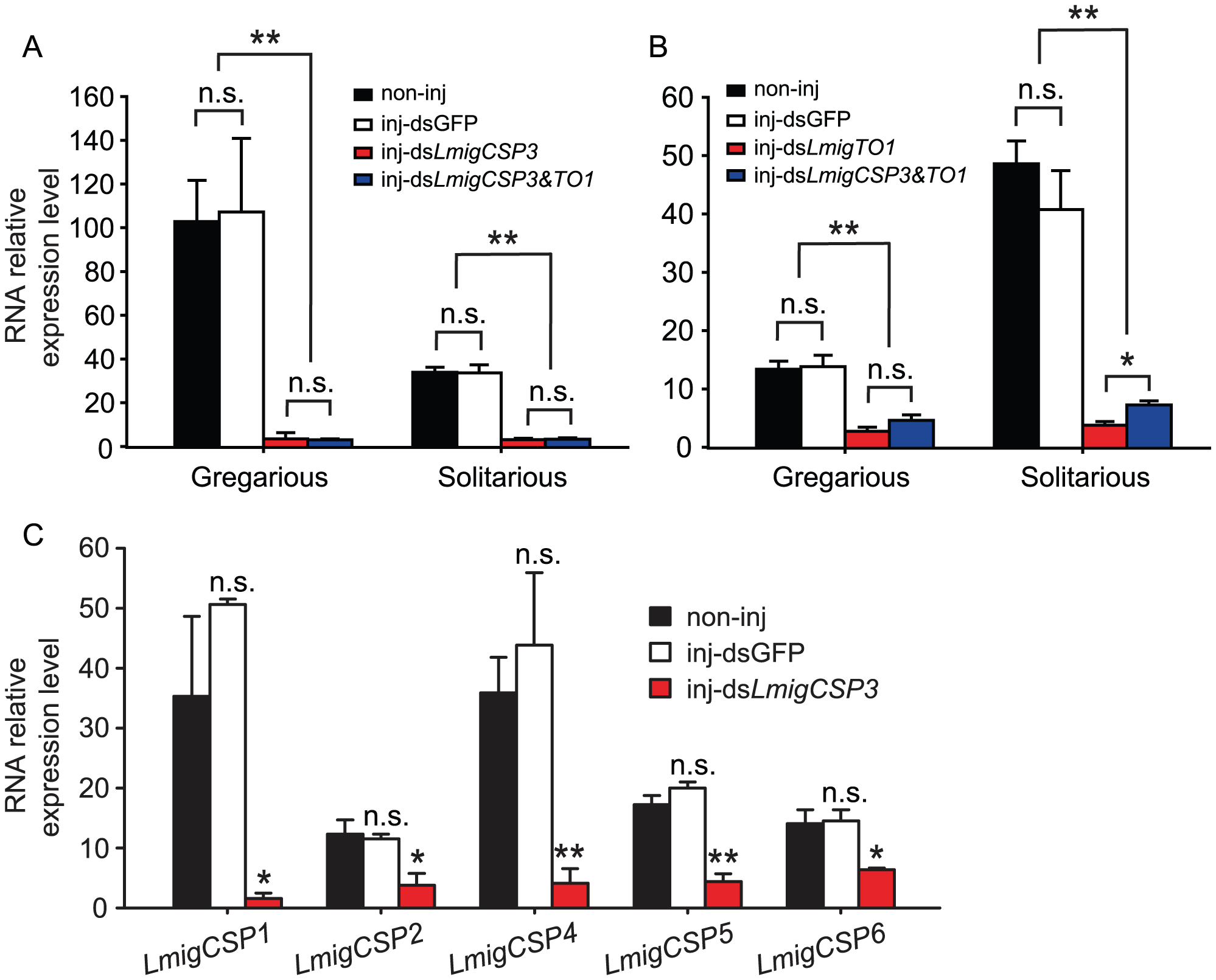 The effects of RNAi knockdown of <i>LmigCSP3</i> and <i>LmigTO1</i> genes on their expression levels.