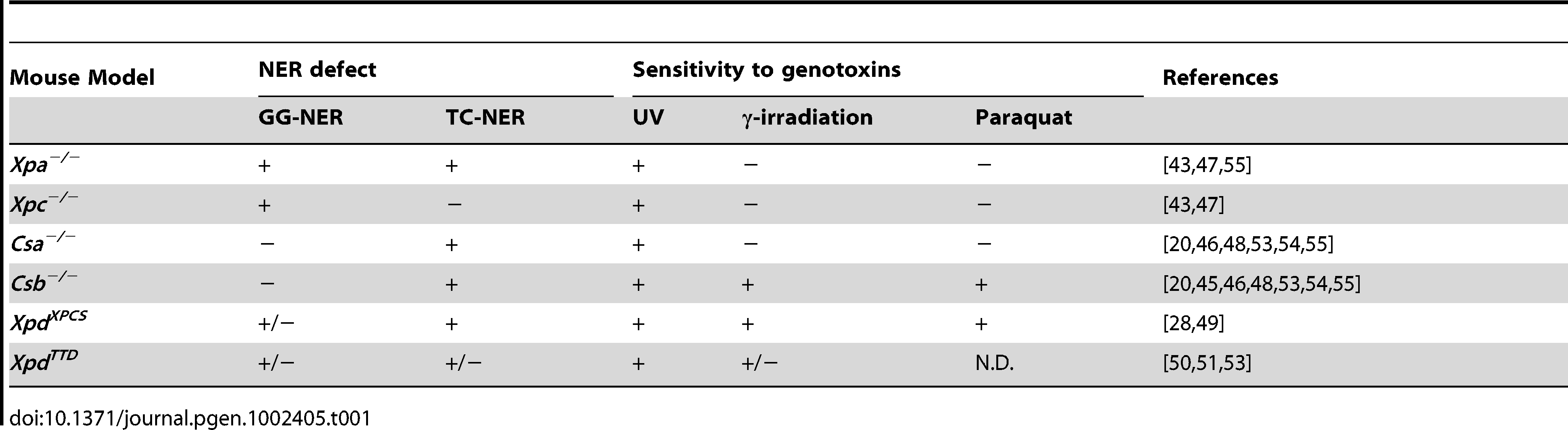 NER defect and sensitivity to genotoxins of embryonic fibroblasts isolated from NER–deficient mouse models.