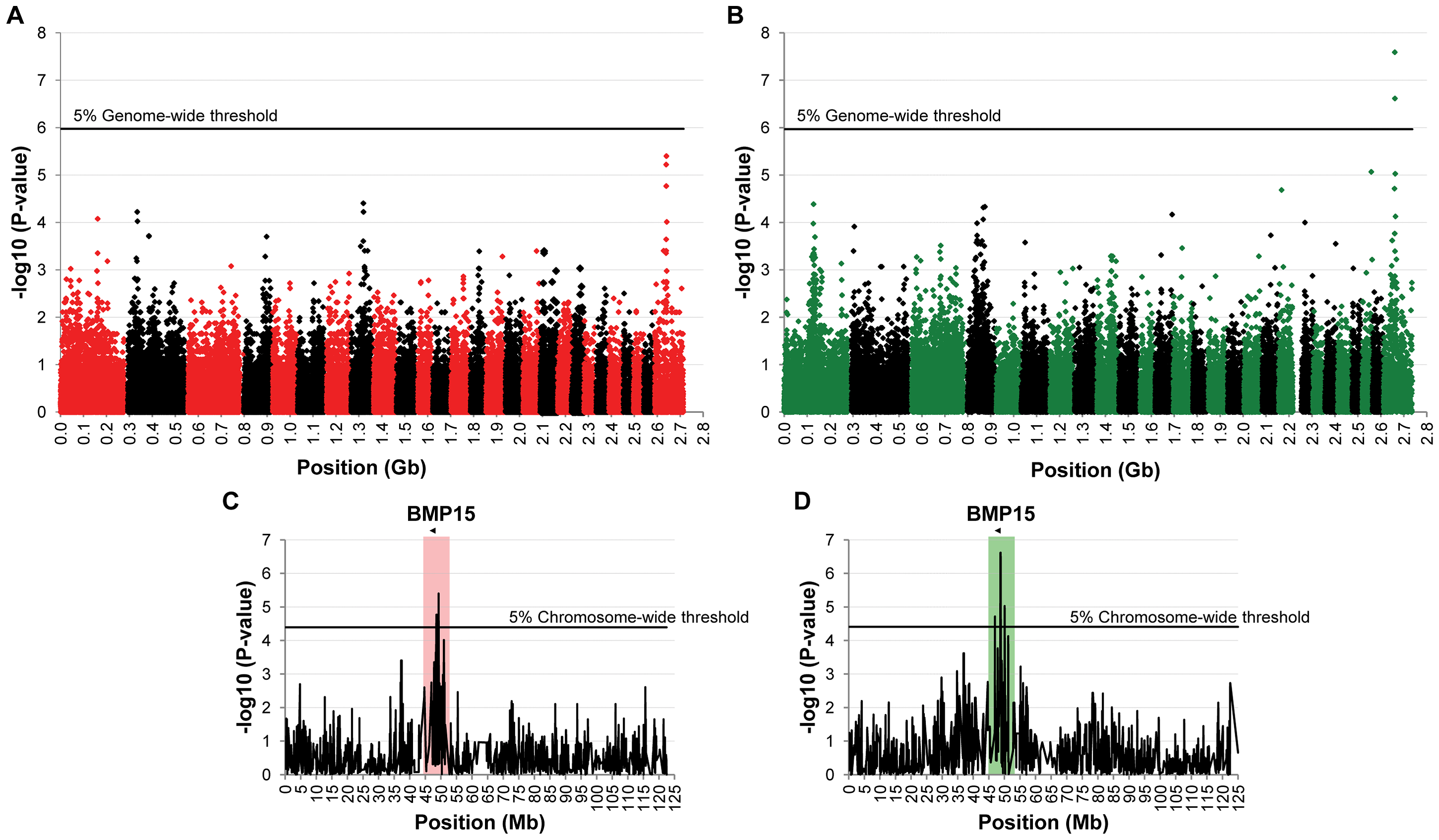 Genome-wide and chromosome-wide association results.
