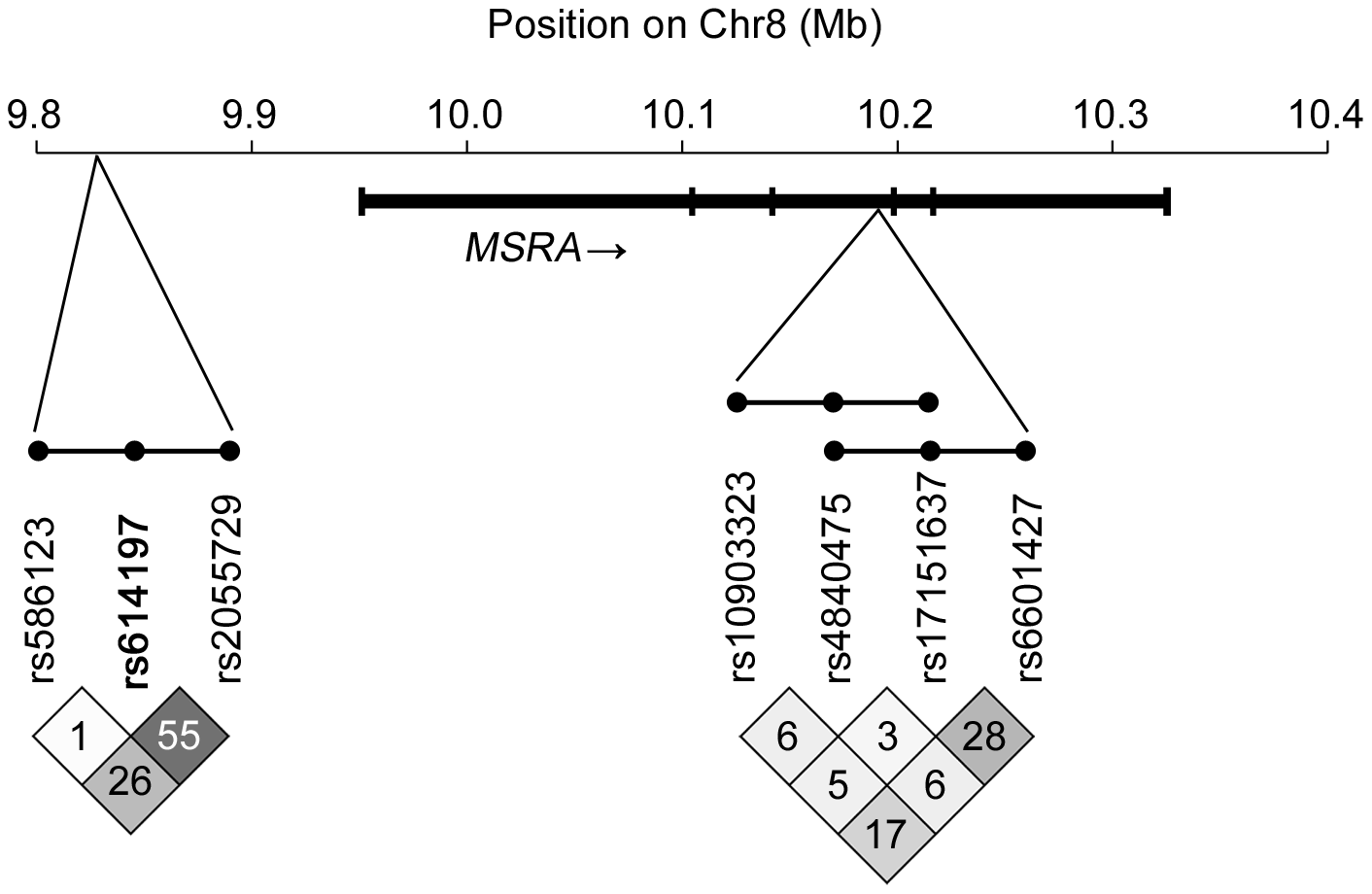 Haplotype association in <i>MSRA</i> region.