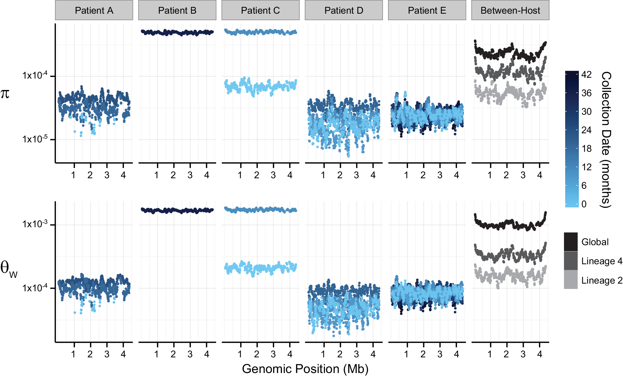 Patterns of nucleotide diversity (π) and Watterson's theta (Ɵ<sub>W</sub>) across the <i>Mycobacterium tuberculosis</i> (<i>M</i>.<i>tb</i>) chromosome.