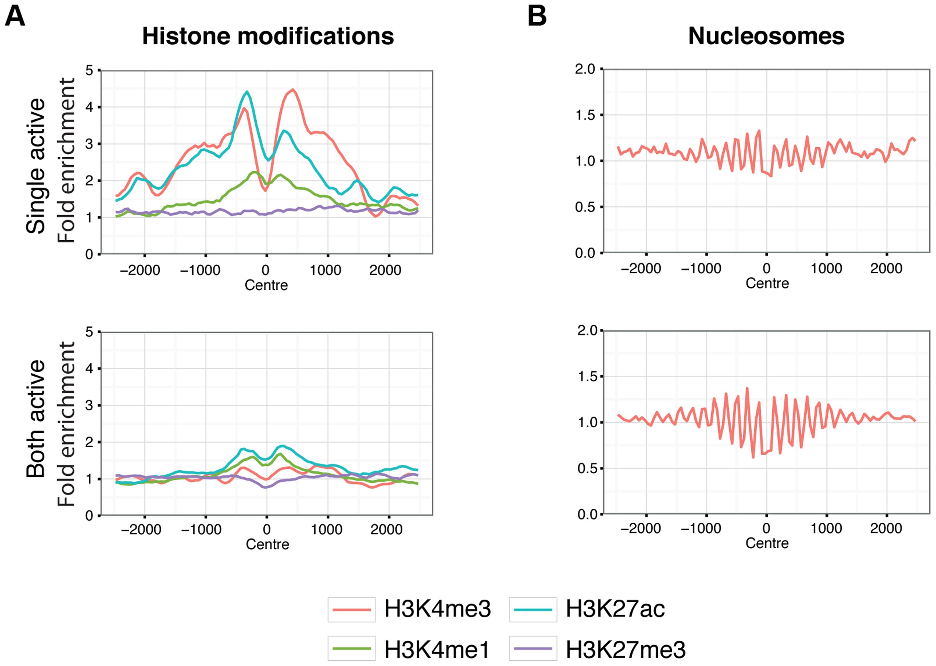 Chromatin behaviour around X chromosome sites.
