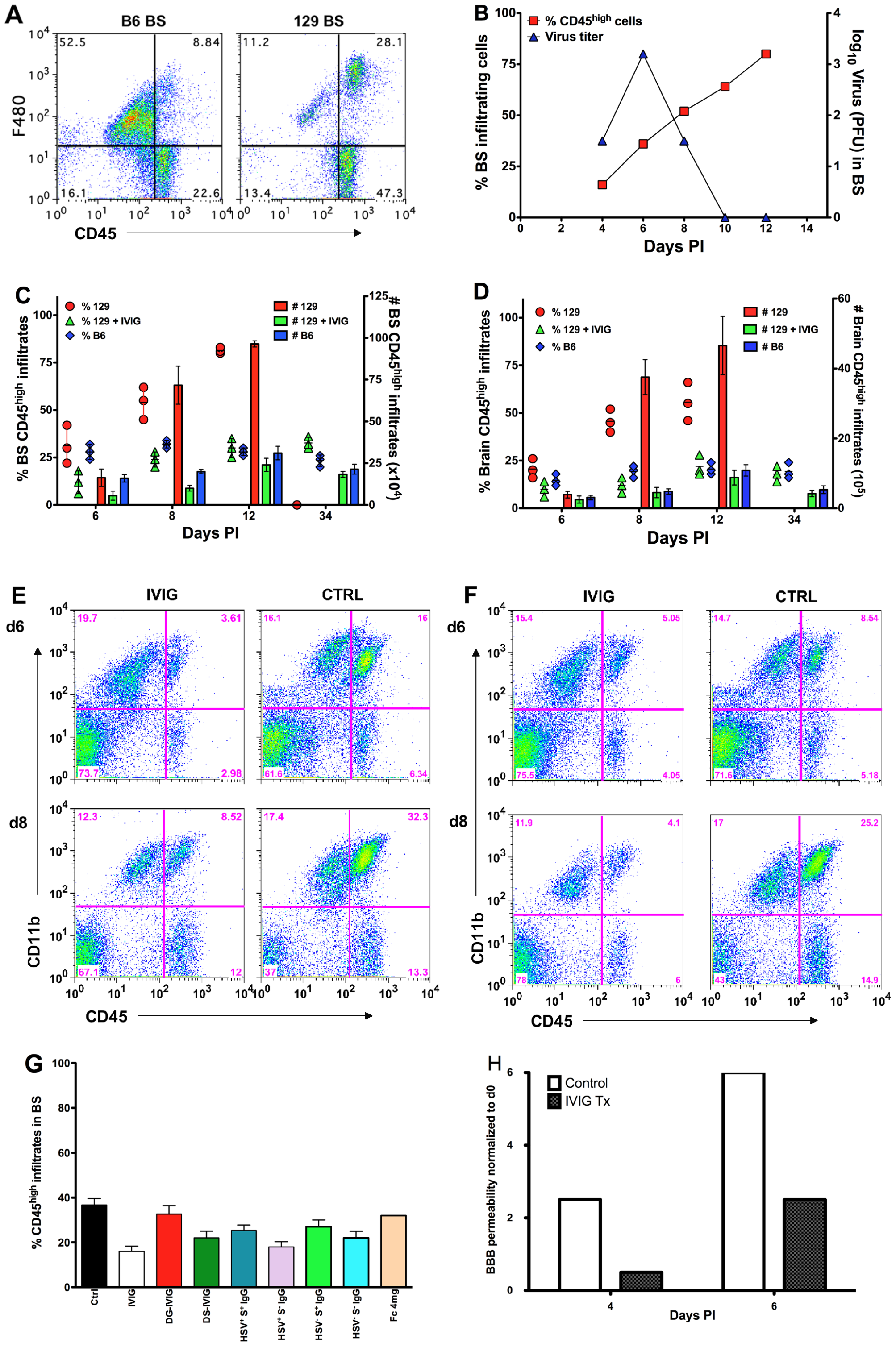 IVIG inhibits CNS inflammation in HSV infected mice.