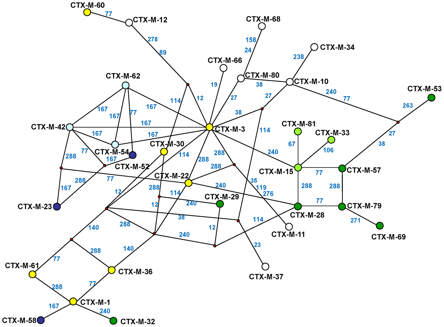 Median-joining network inferred for CTX-M-1 group amino acid sequences.