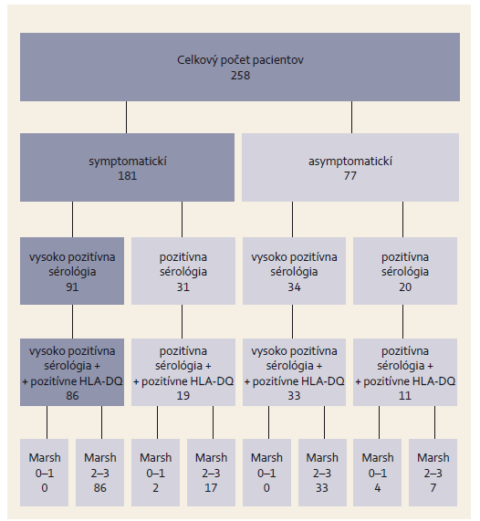 Výsledky sérológie príznačnej pre celiakiu a histologické nálezy vo vzorke pacientov. Fig. 1. Serological results characteristic for coeliac disease and histological findings in the patient group.