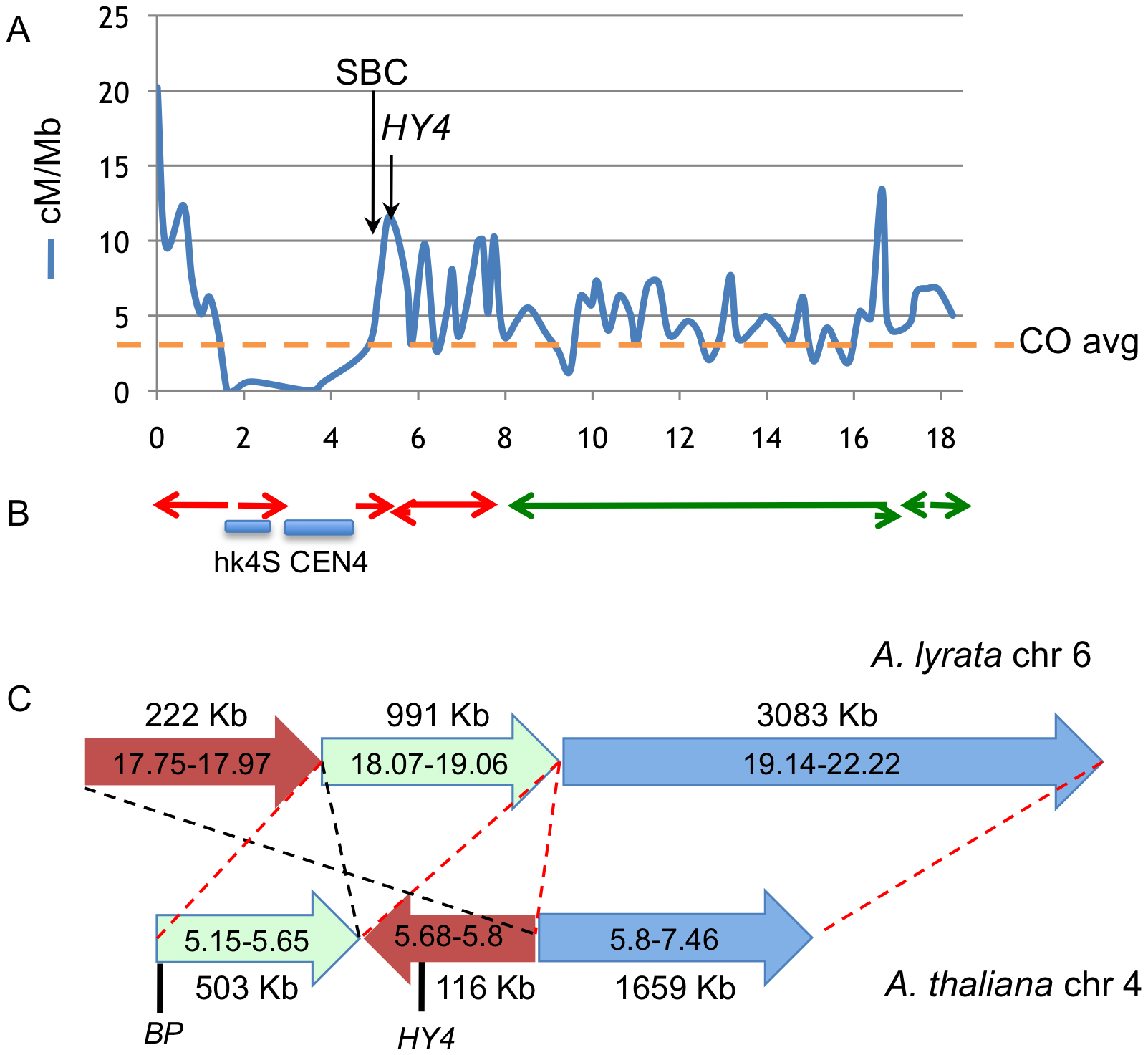 Colocalization of breakpoints with recombination hotspots and chromosome rearrangement events.