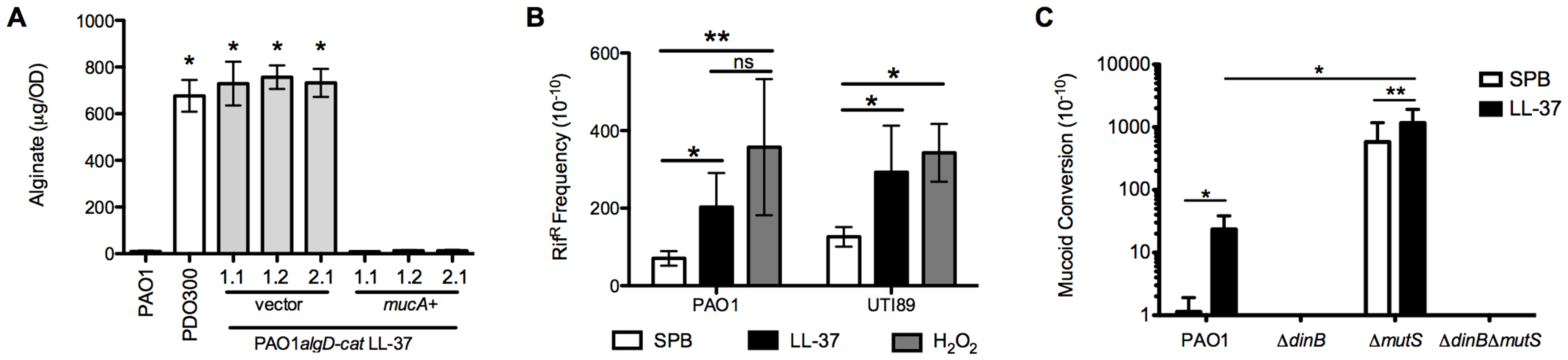 LL-37 induces bacterial mutagenesis in a DinB-dependent manner.