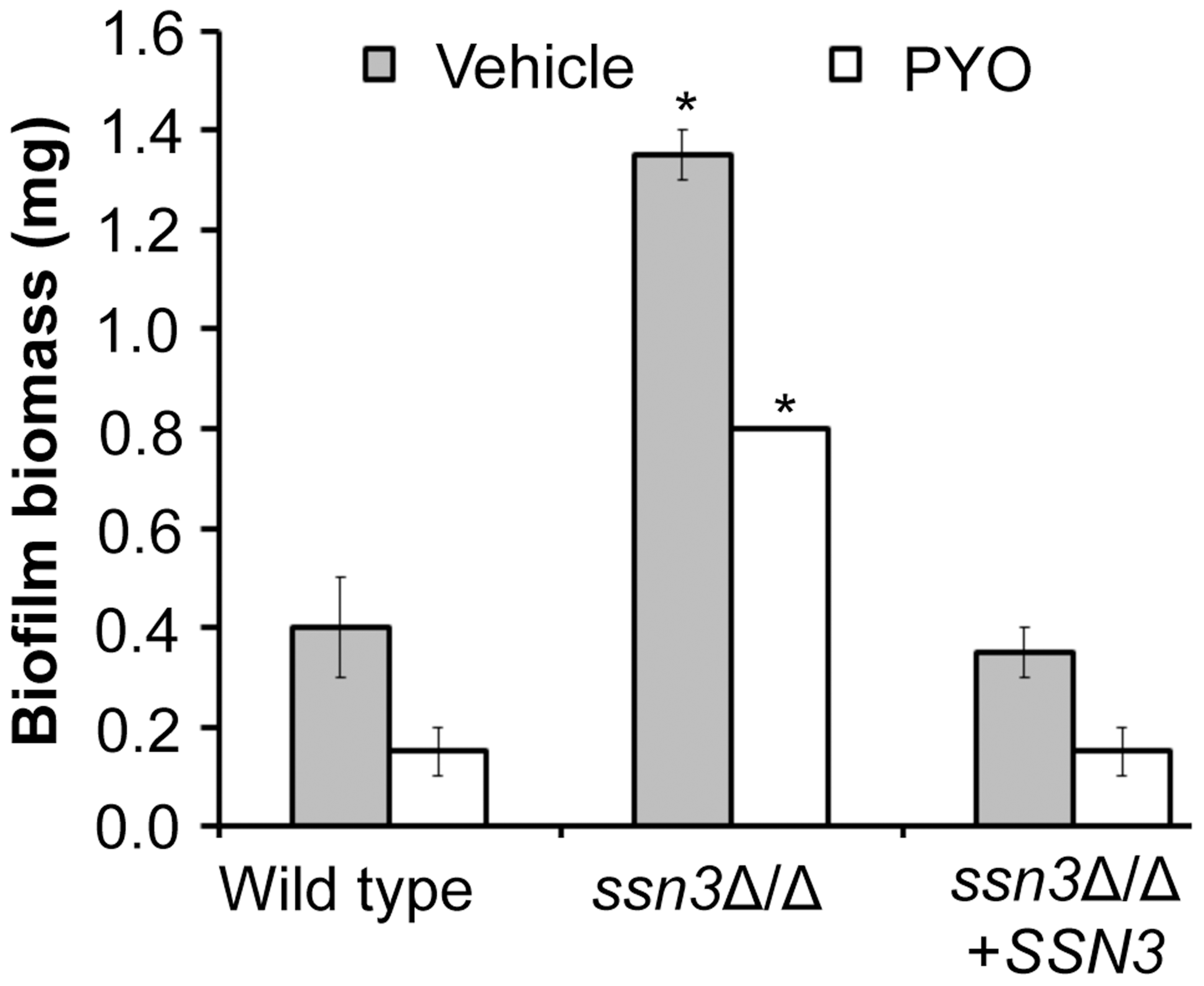 Mutation of <i>SSN3</i> increases biofilm formation.