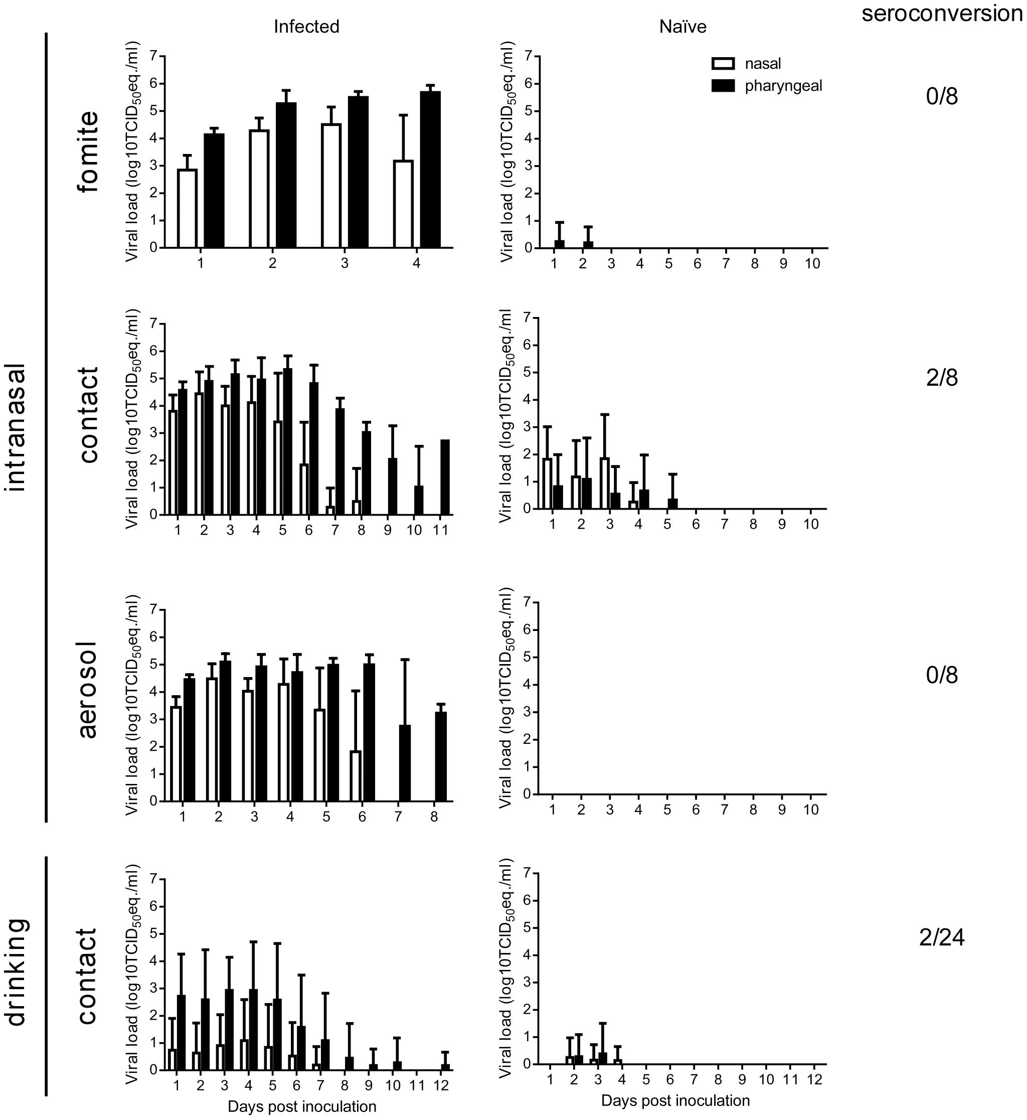 Transmission of Nipah virus (strain Bangladesh/200401066) in Syrian hamsters.