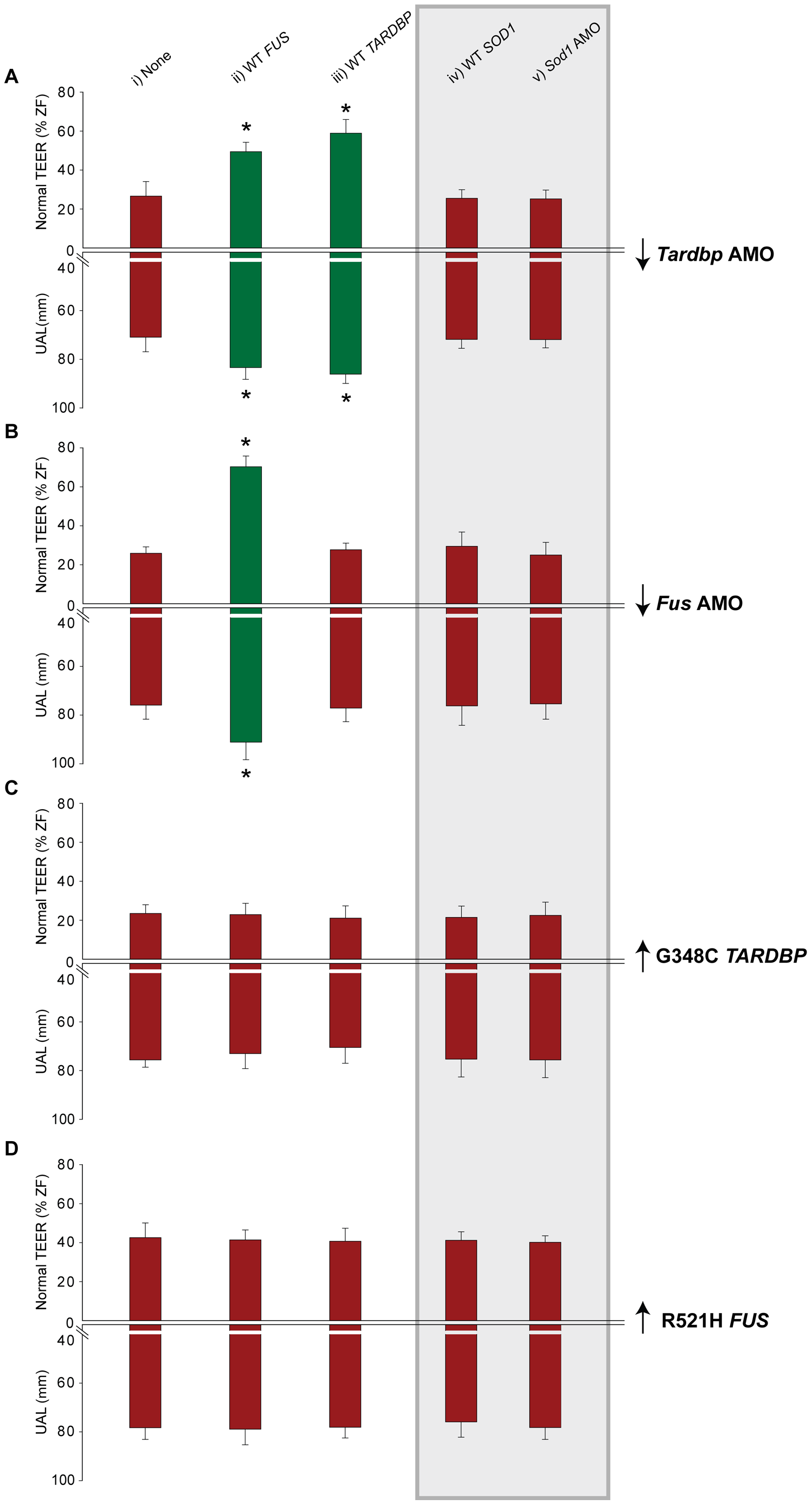 <i>FUS</i> and <i>TARDBP</i> genetically interact independently of <i>SOD1</i>.