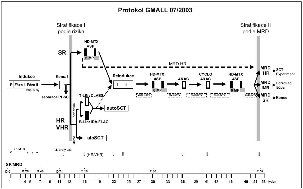 Obr. 1. Léčebný protokol GMALL 07/2003.