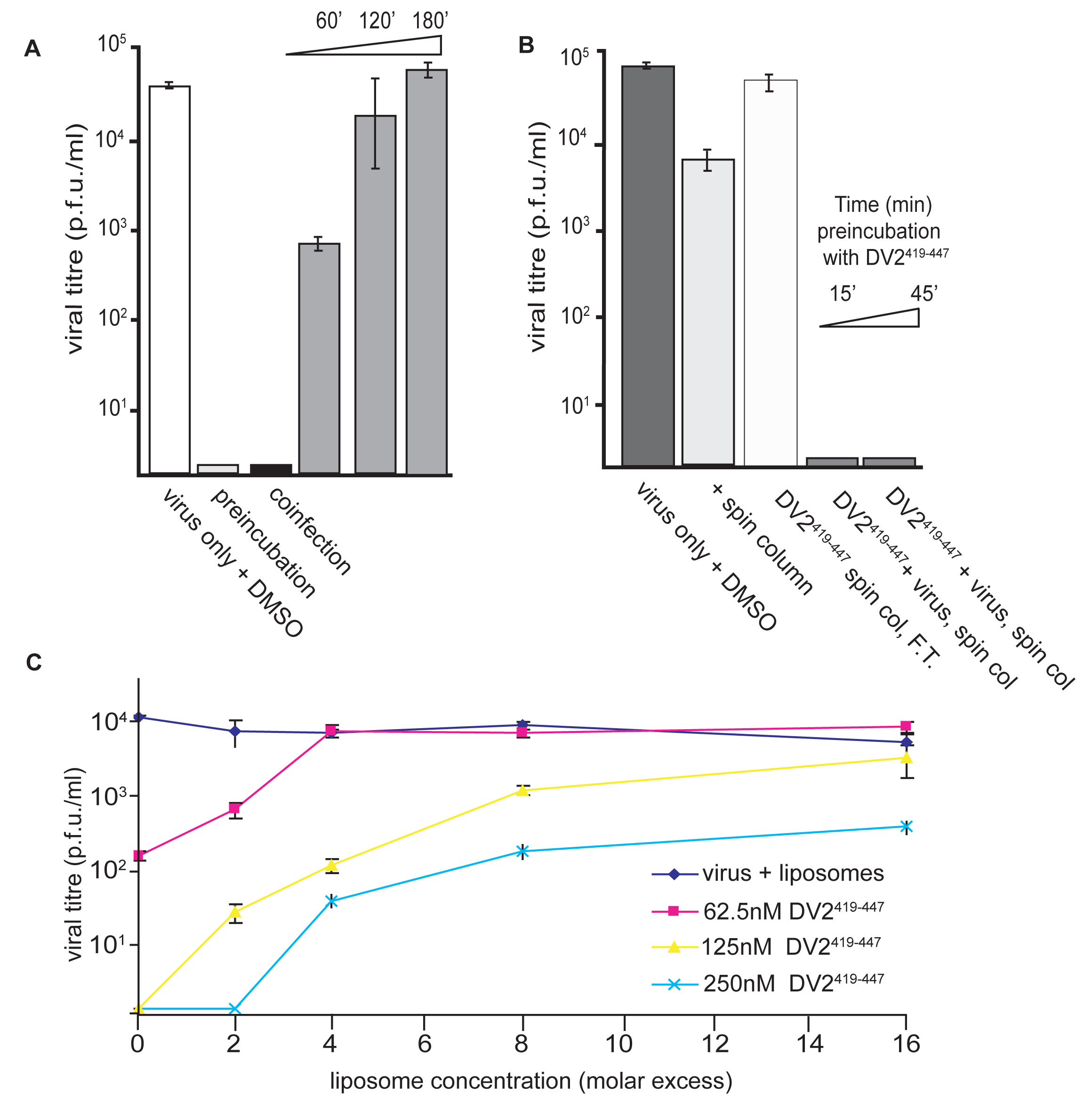 Inhibition and reversibility of viral infectivity by DV2<sup>419–447</sup>.