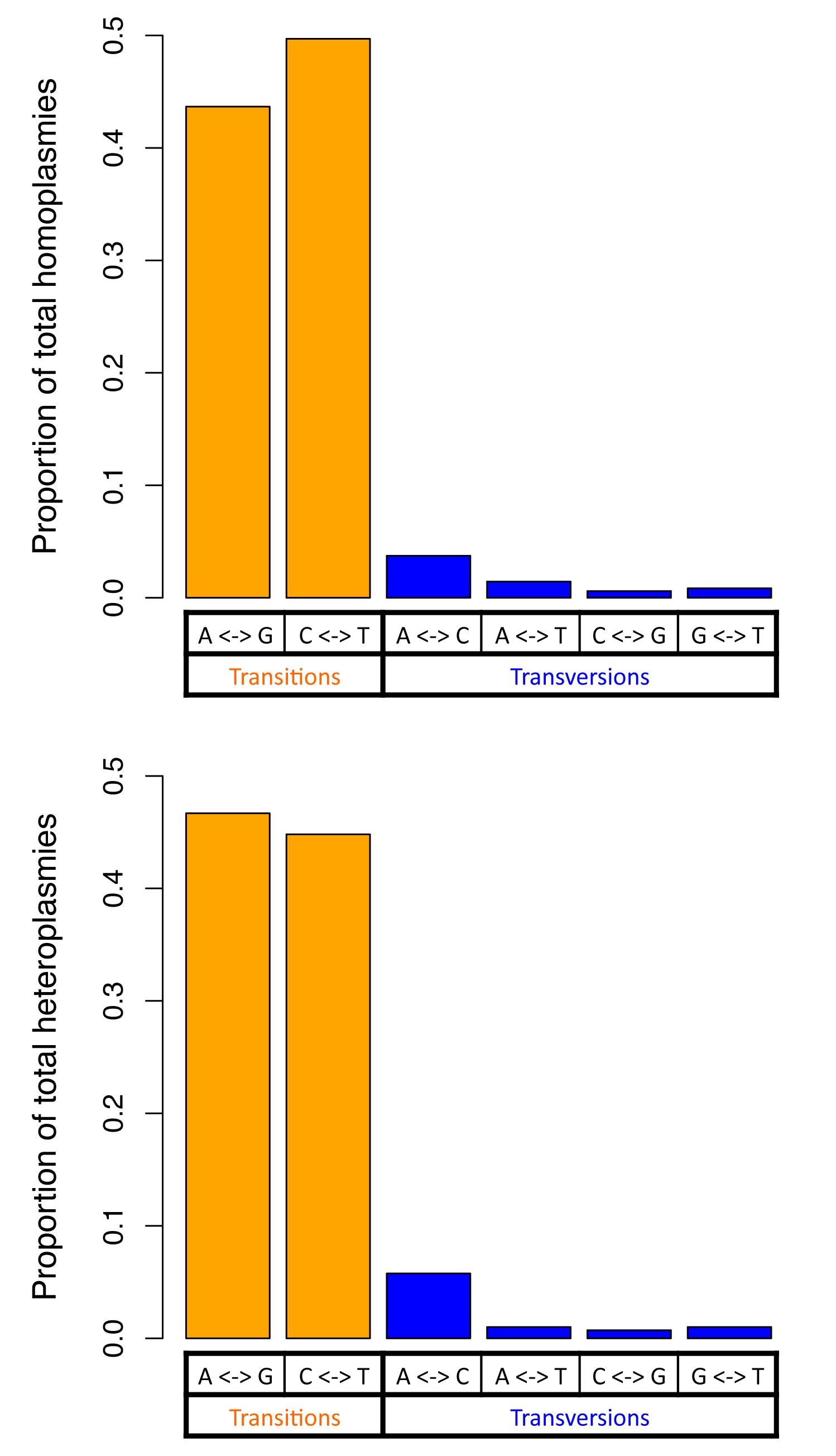 Two classes of base changes for homoplasmies and heteroplasmies.