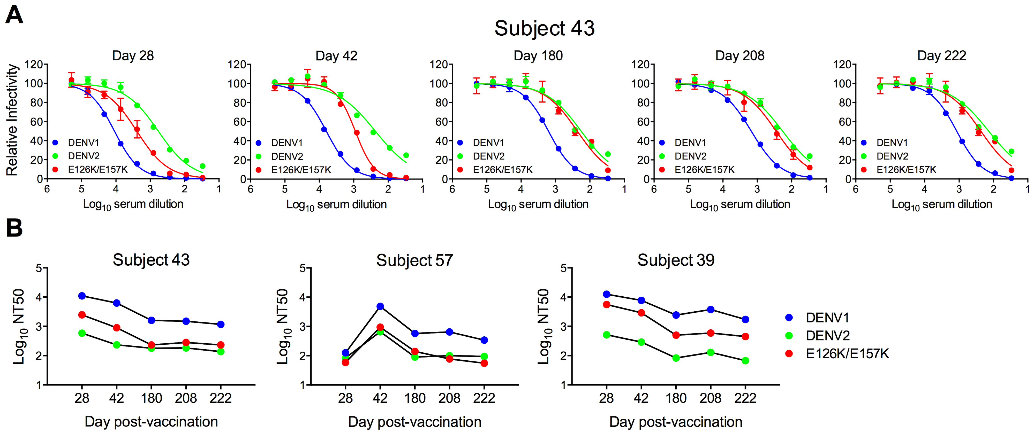 Longitudinal analysis of the effects of DENV1 E126K/E157K mutations on serum neutralizing activity.