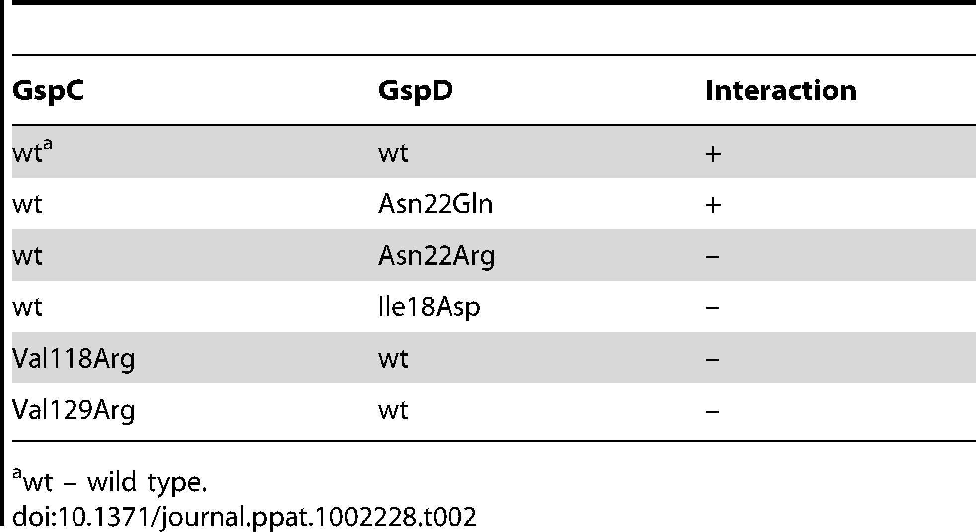 Characterization of GspC–GspD interaction in the bacterial two-hybrid system.