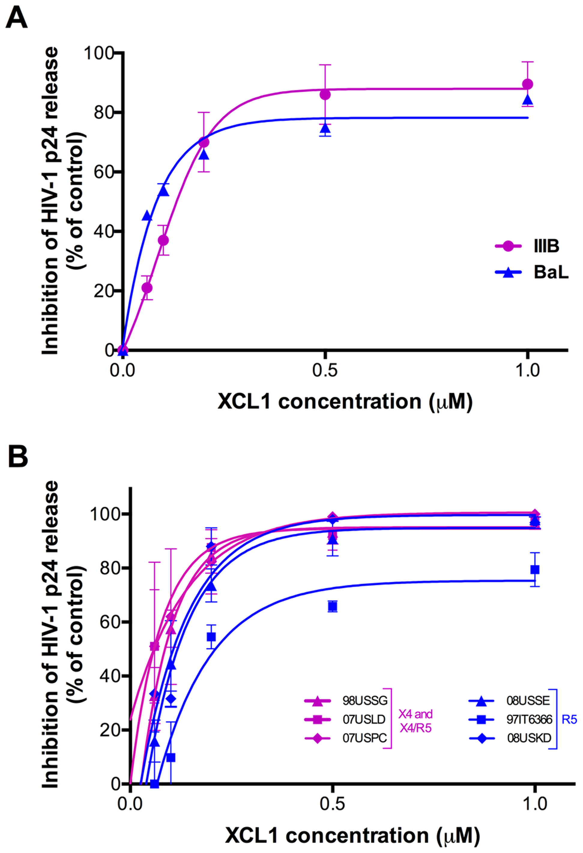 XCL1 inhibits HIV-1 infection irrespective of coreceptor usage.