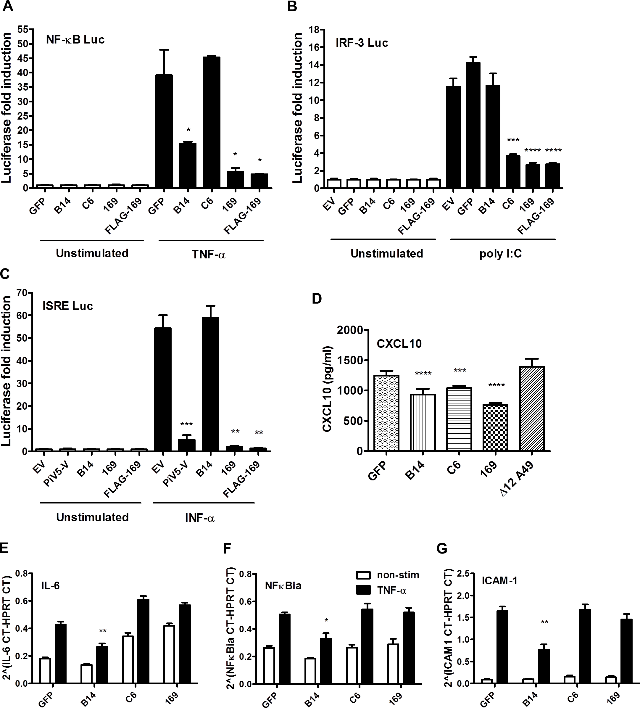 Protein 169 inhibits protein expression after activation of several innate immune signaling pathways.