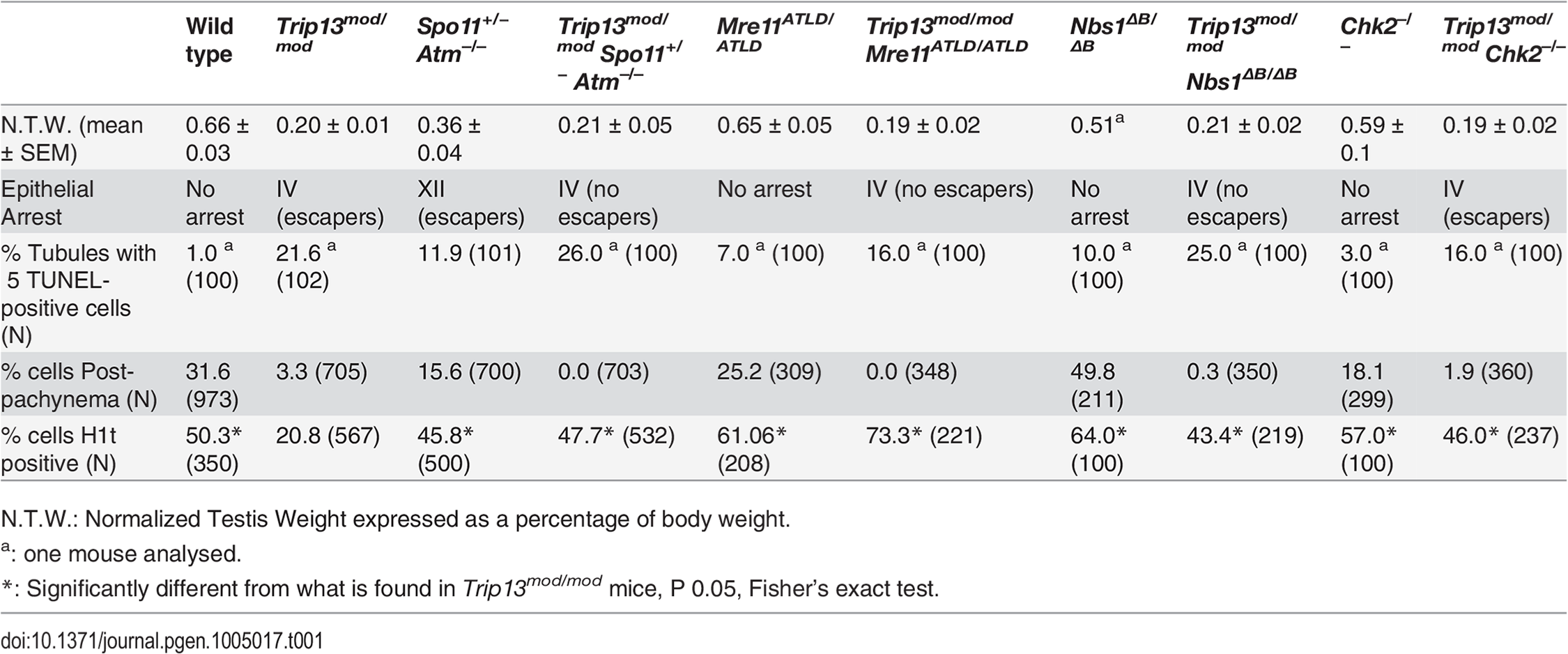 Testicular and meiotic phenotypes of wild-type and mutant mice.