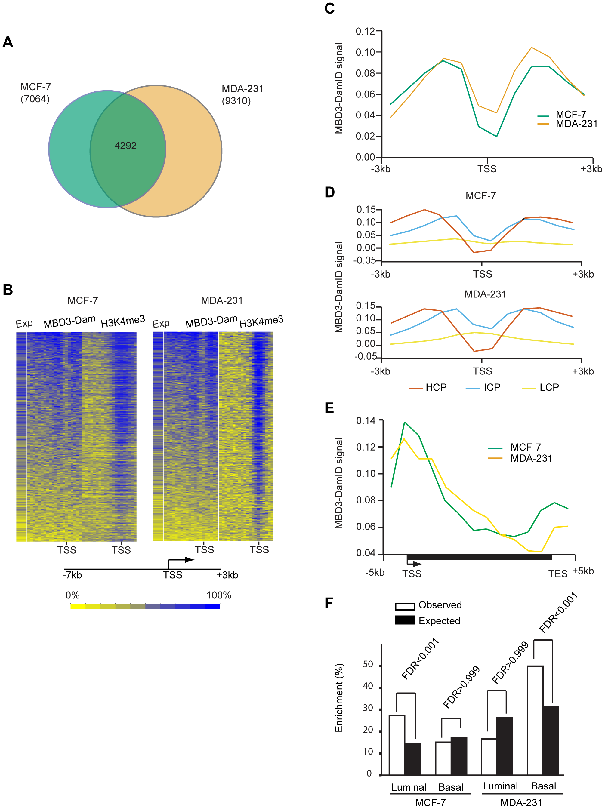 MBD3 localizes to active CpG rich promoters independent of cell type.