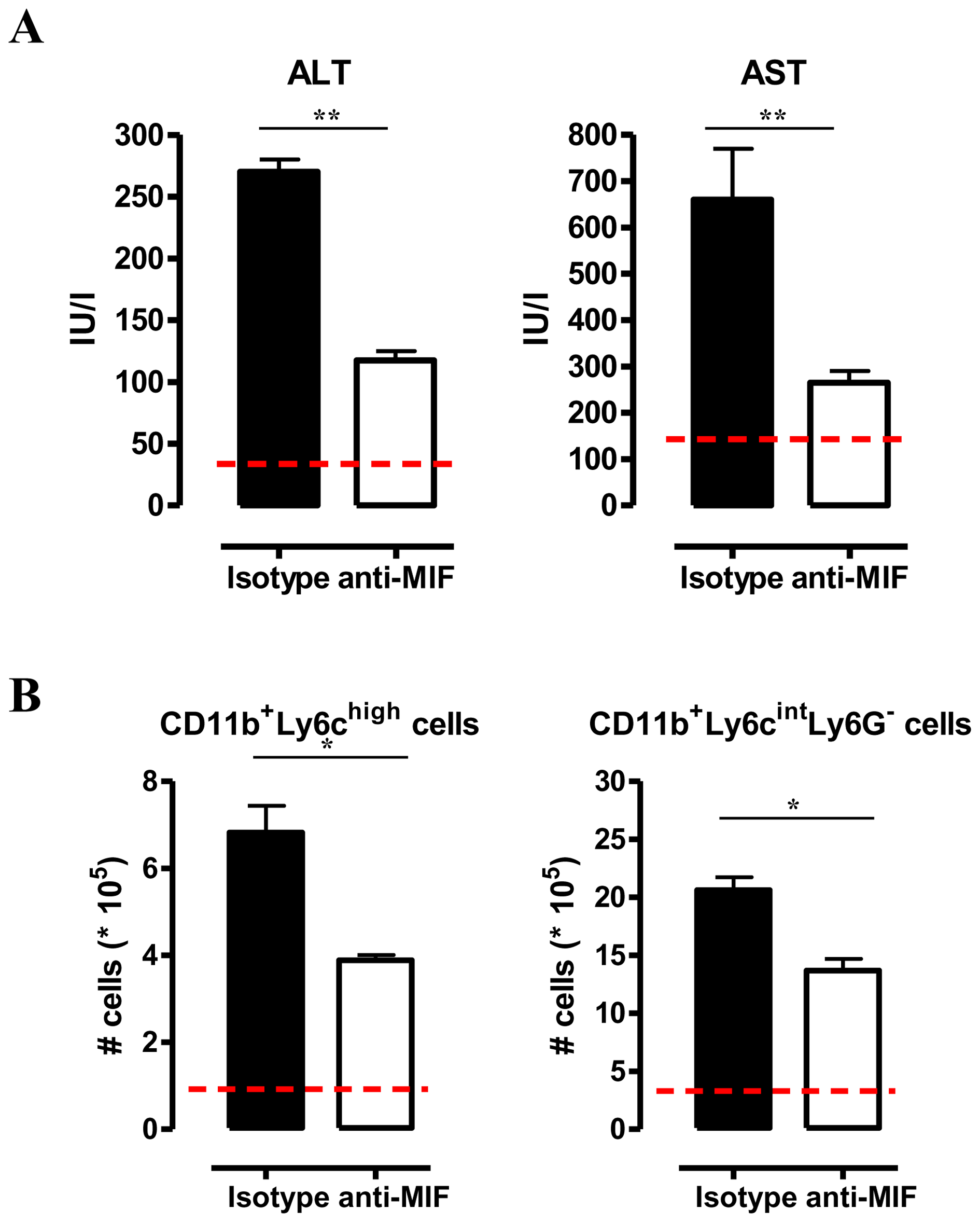 Anti-MIF treatment reduces serum ALT/AST levels and affects liver cell composition during <i>T. brucei</i> infection.