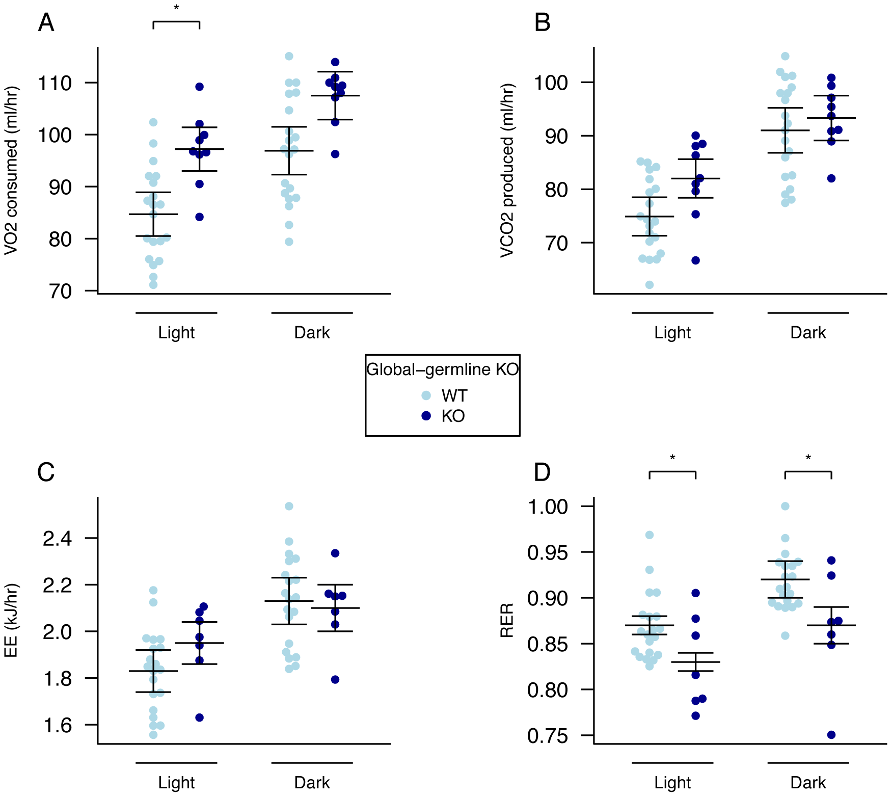 Energy expenditure and metabolism in male global germline <i>Fto</i> KO mice.