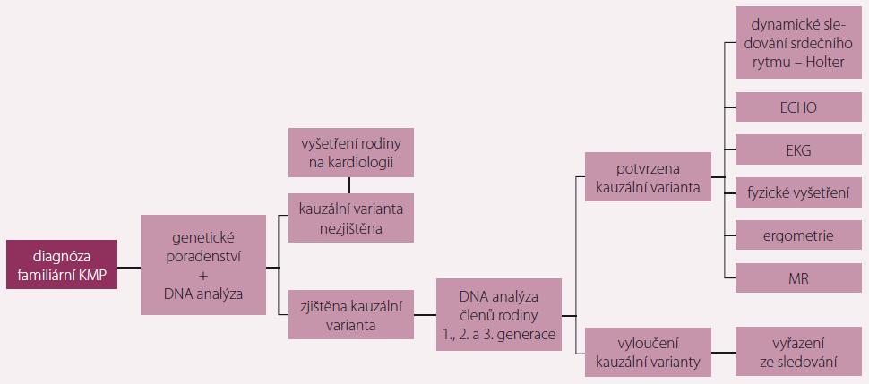 Doporučený algoritmus vyšetřování příbuzných pacienta s dědičným typem kardiomyopatie (KMP).
