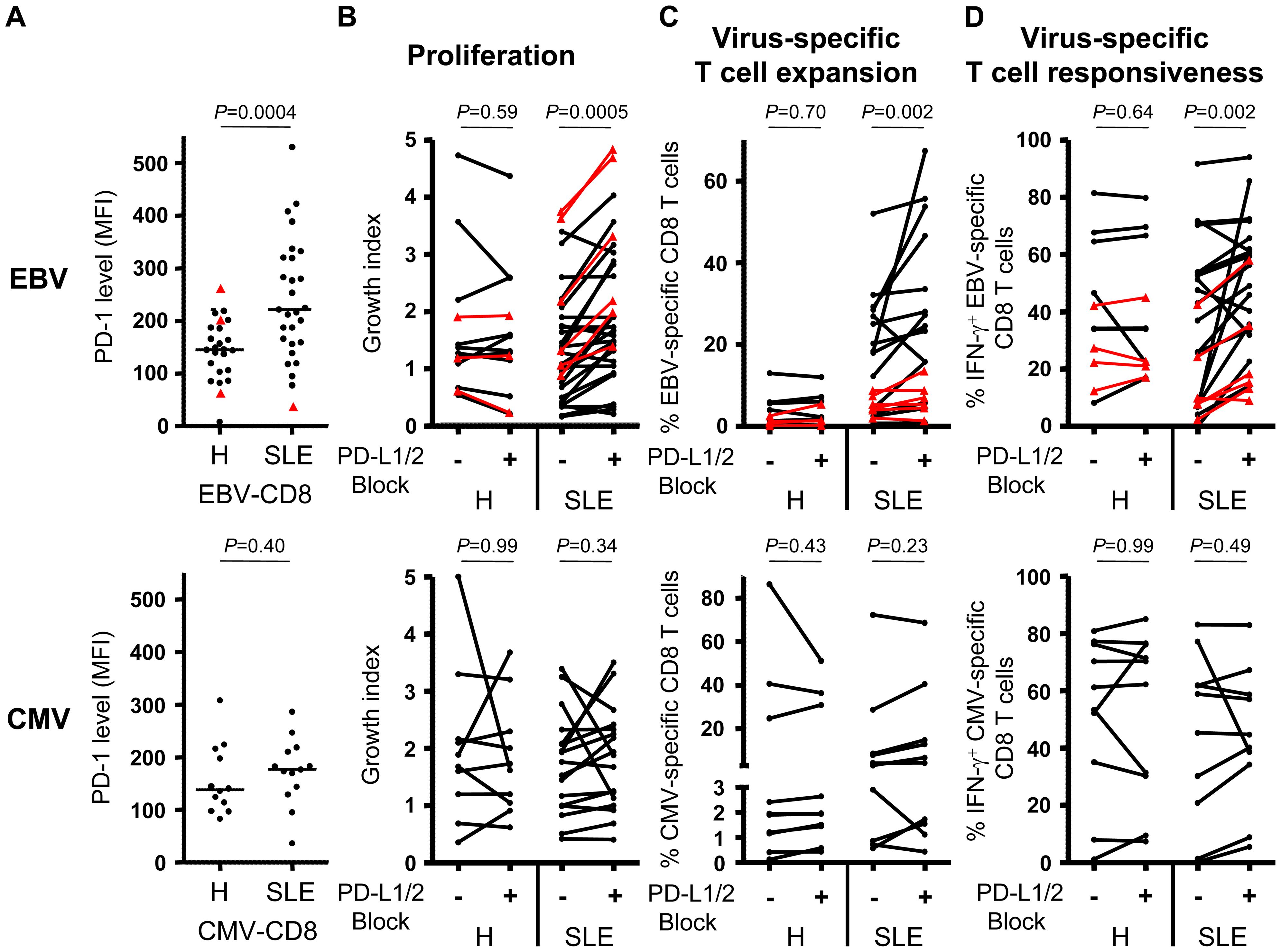 Blockade of PD-1 signalling revigorates EBV-specific T cell responses.