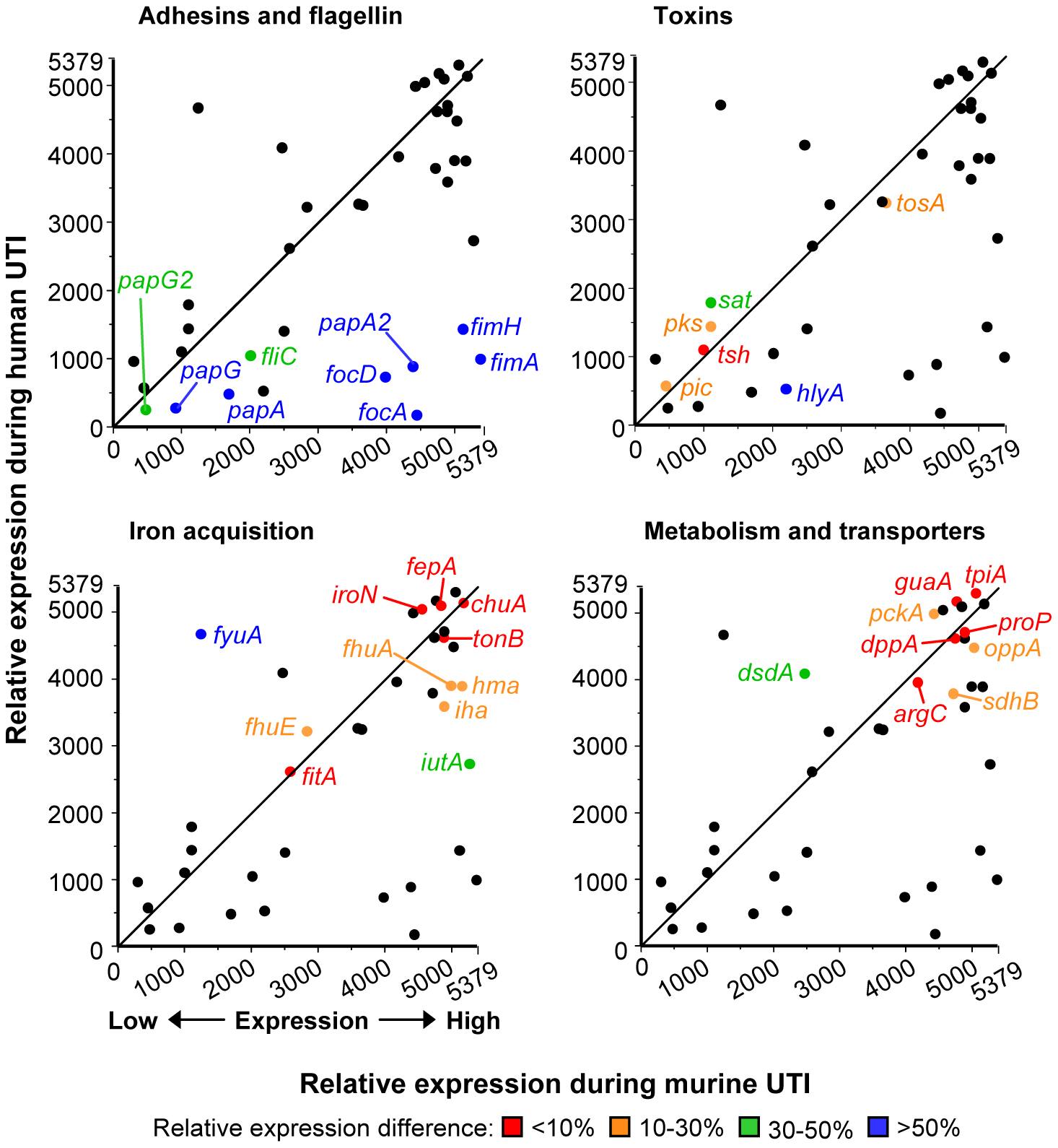 Host-specific virulence gene expression by <i>E. coli</i>.