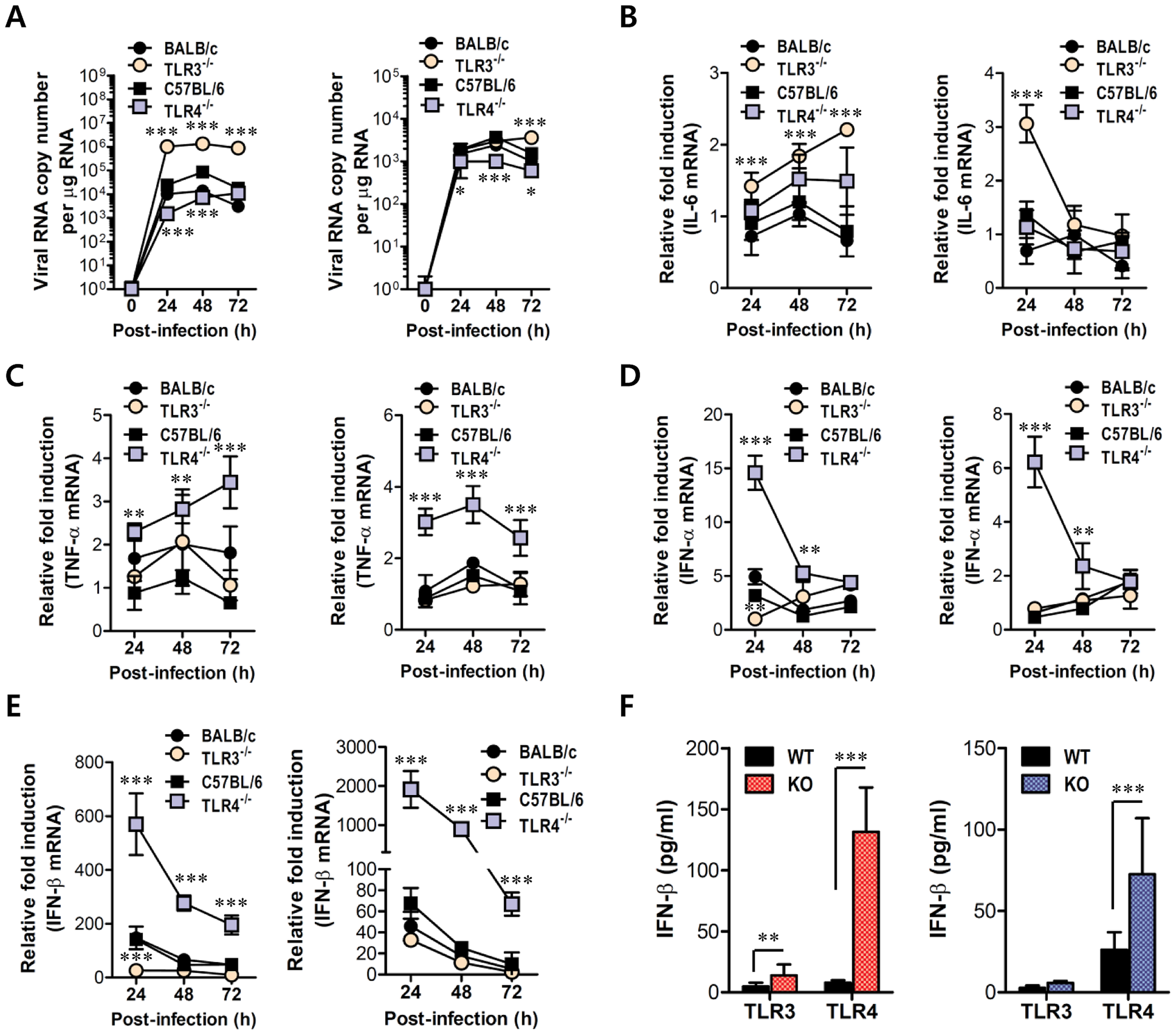 Virus control and type I IFN responses of myeloid cells derived from TLR3<sup>−/−</sup> and TLR4<sup>−/−</sup> mice to JEV infection.