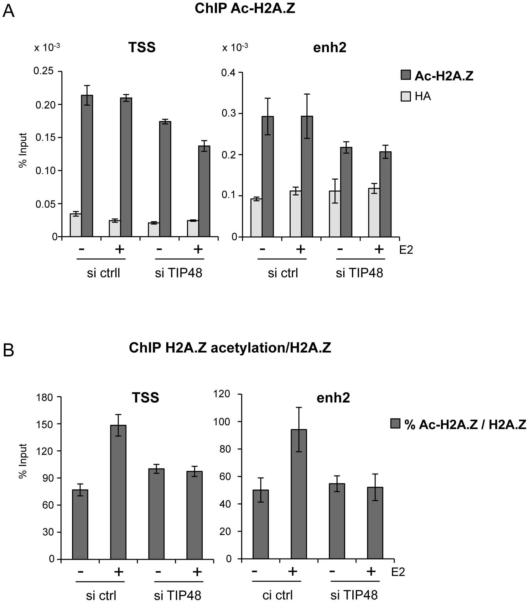 TIP48 promotes acetylation of H2A.Z.