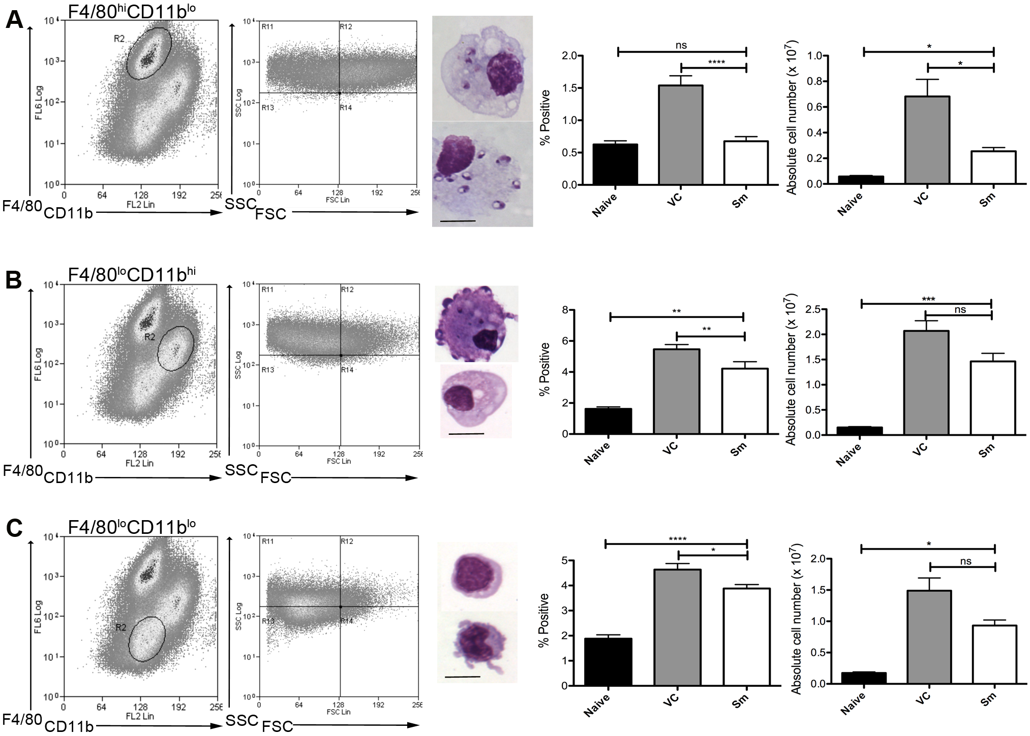 Sensitivity of mononuclear phagocytes in <i>L.donovani</i> infected mice to RTKi treatment.