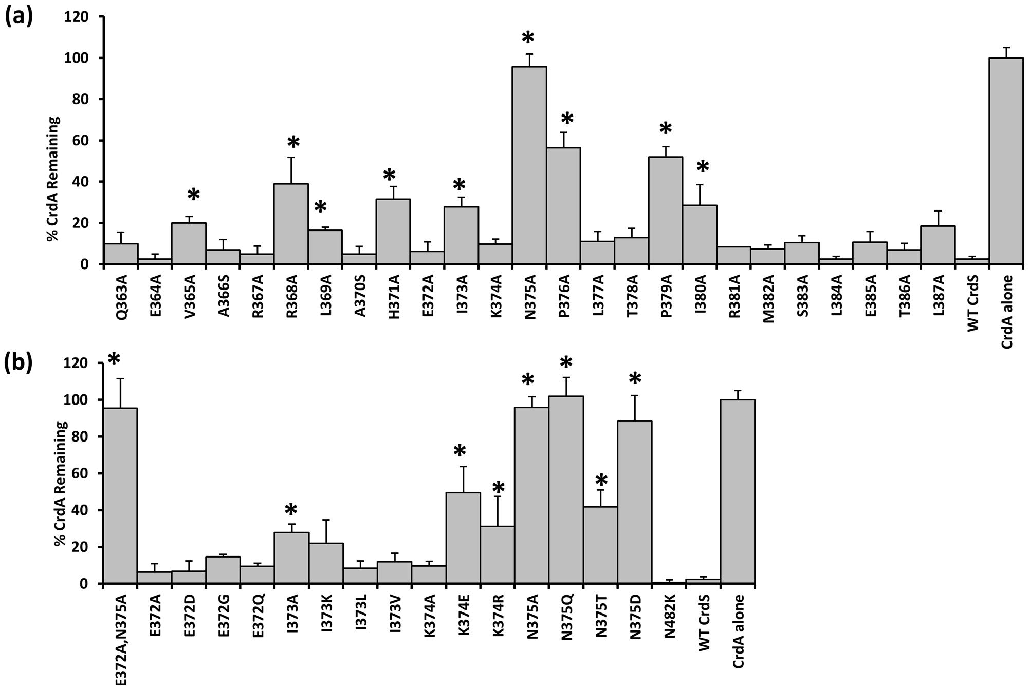Phosphatase Activity of CrdS α1 Mutants.