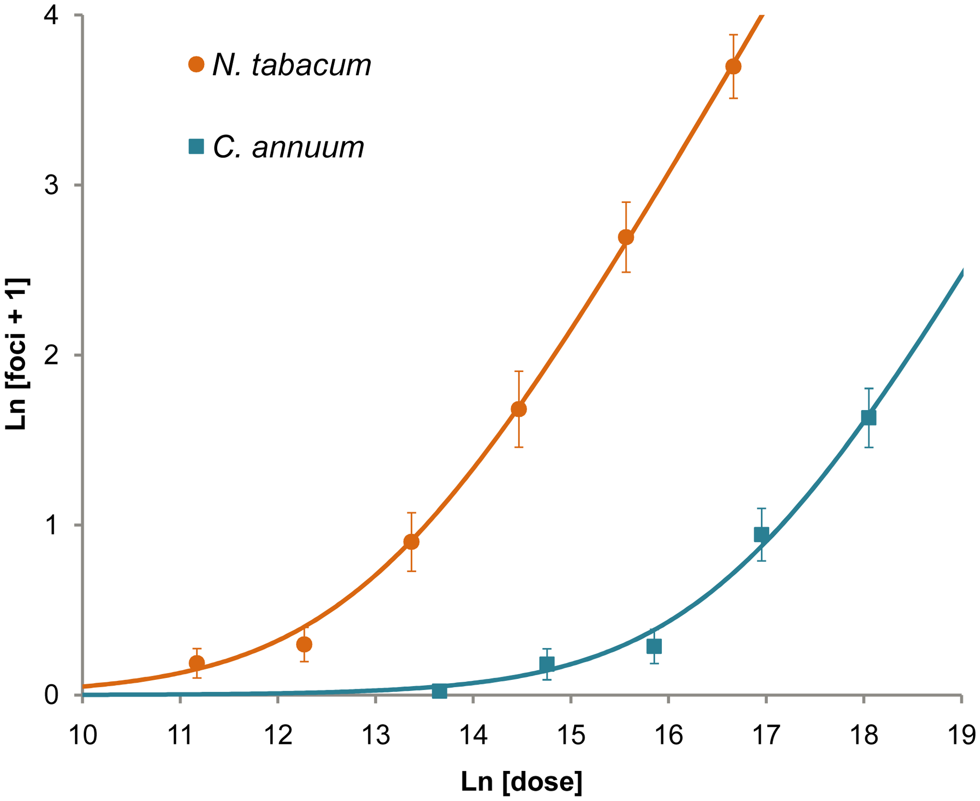 Number of primary infection foci in inoculated leaves at different doses.
