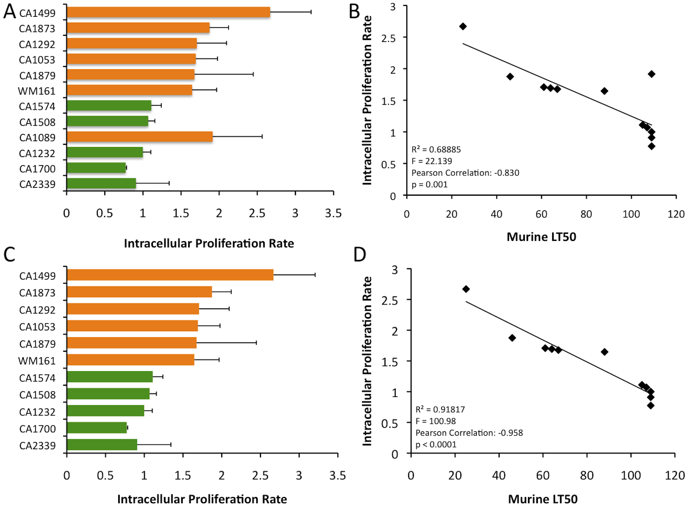 In vitro analysis of intracellular proliferation rates (IPR) show increased proliferation levels in VGIIIa and IPR values correlate with in vivo virulence.